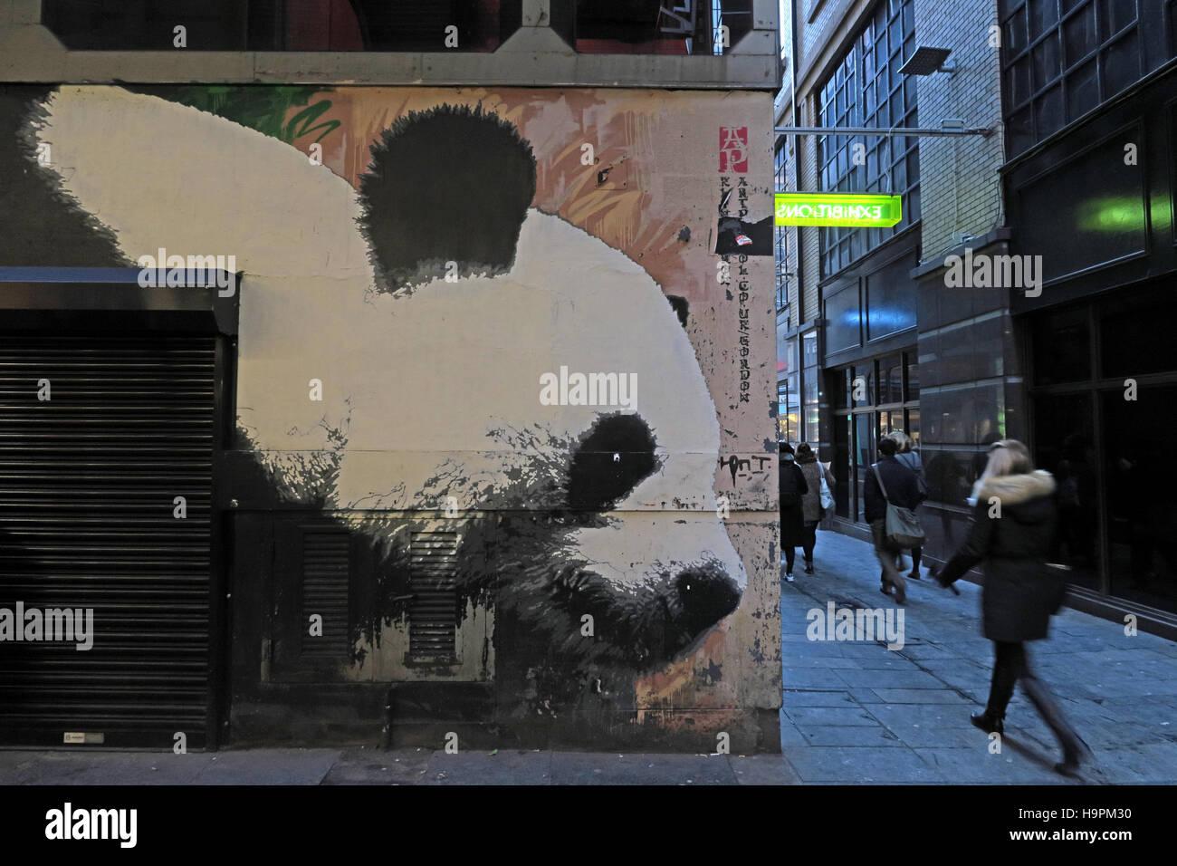 Laden Sie dieses Alamy Stockfoto Panda Graffiti, Mitchell Lane, Glasgow, Schottland, UK - H9PM30