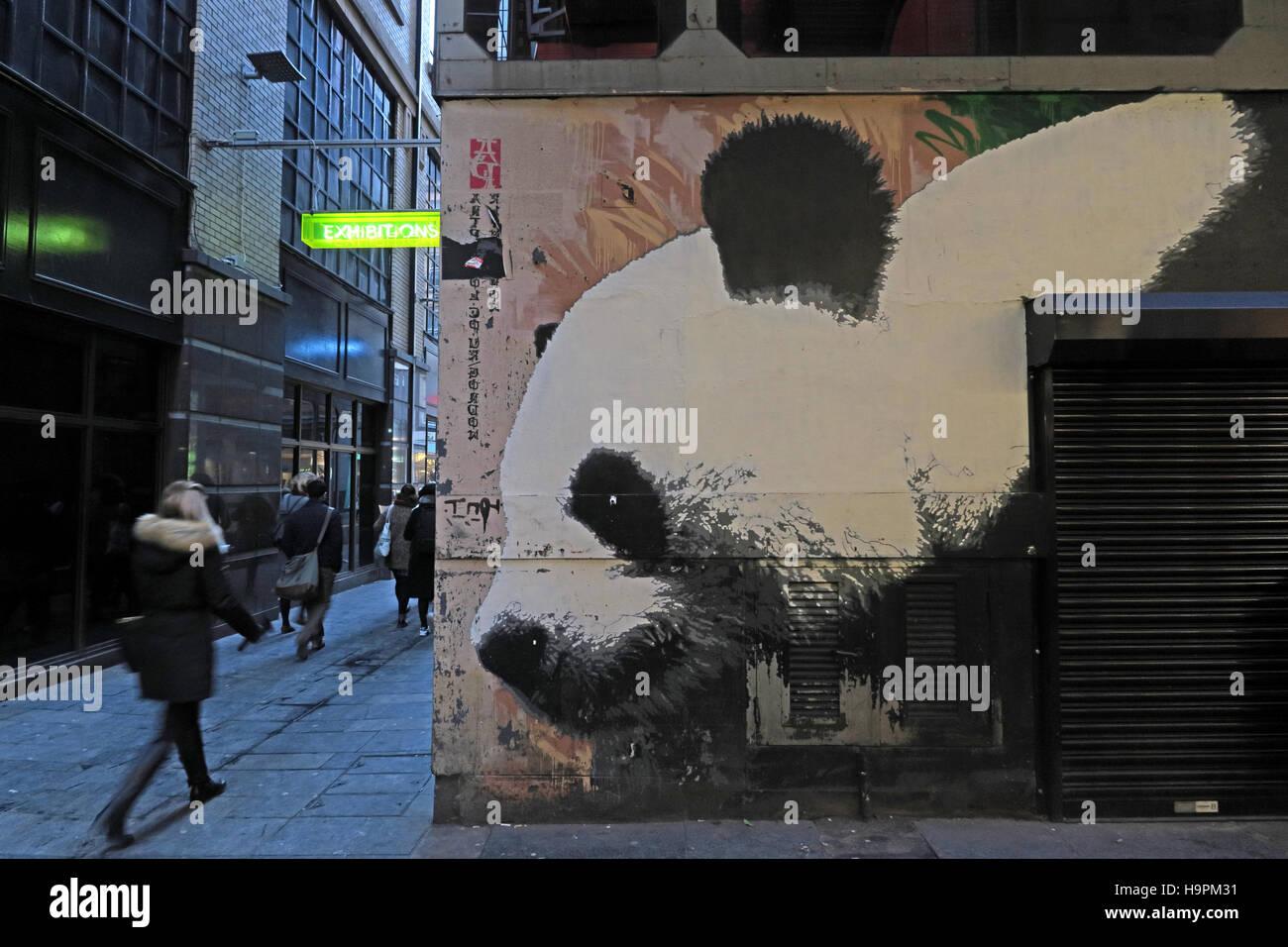Laden Sie dieses Alamy Stockfoto Panda Graffiti, Mitchell Lane, Glasgow, Schottland, UK - H9PM31