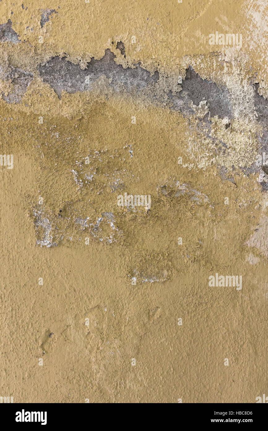 Feuchte Wand Stockfoto, Bild: 127503858 - Alamy