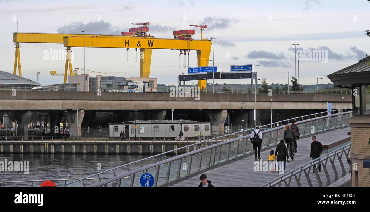 Laden Sie dieses Alamy Stockfoto Harland & Wolff gelb Krane, Samson und Goliath, über Belfast, NI (von Krupp) - HE18C8