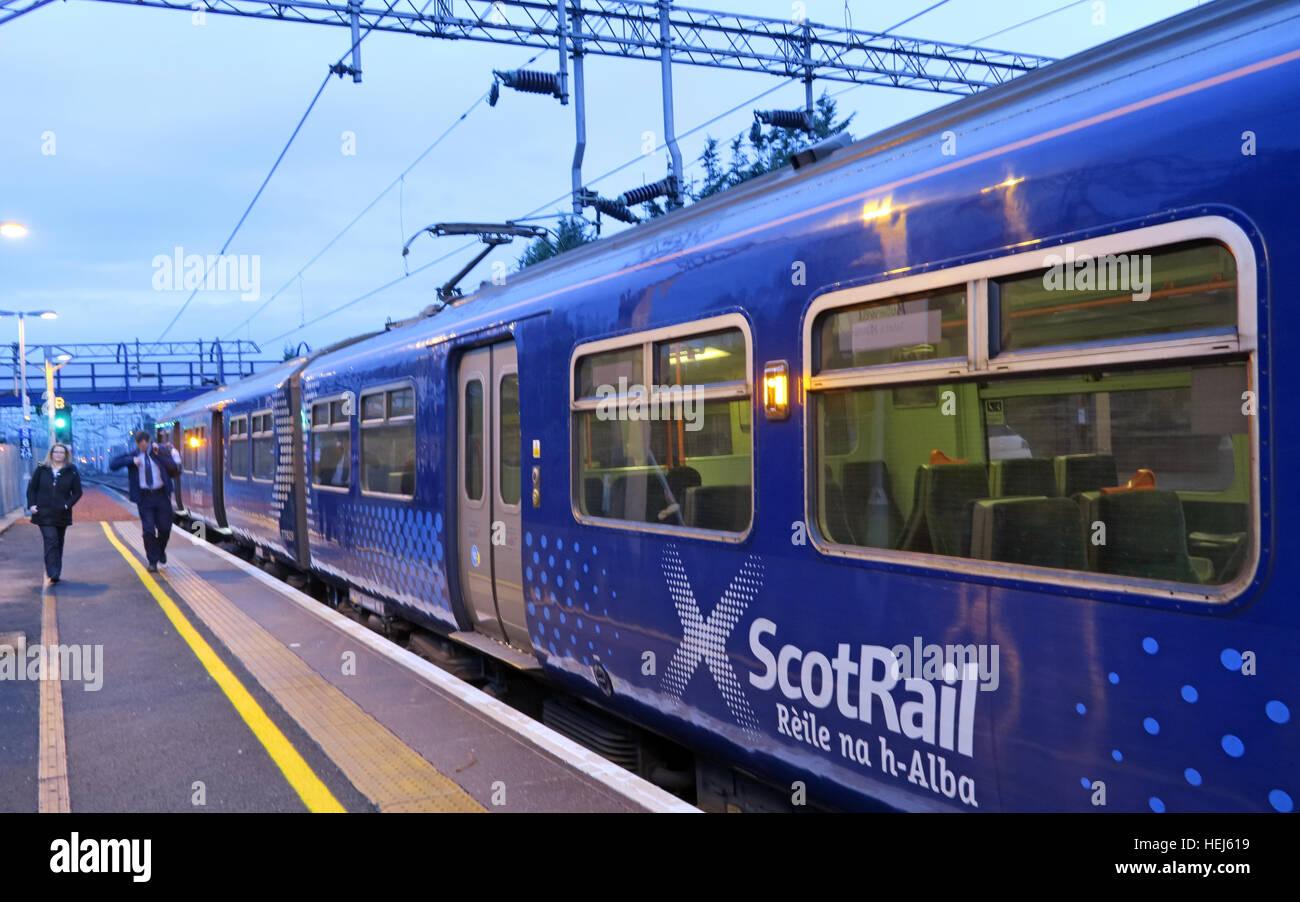 Laden Sie dieses Alamy Stockfoto Motherwell Station Scotrail Abellio trainieren Kutschen, Strathclyde, Schottland, UK - HEJ619