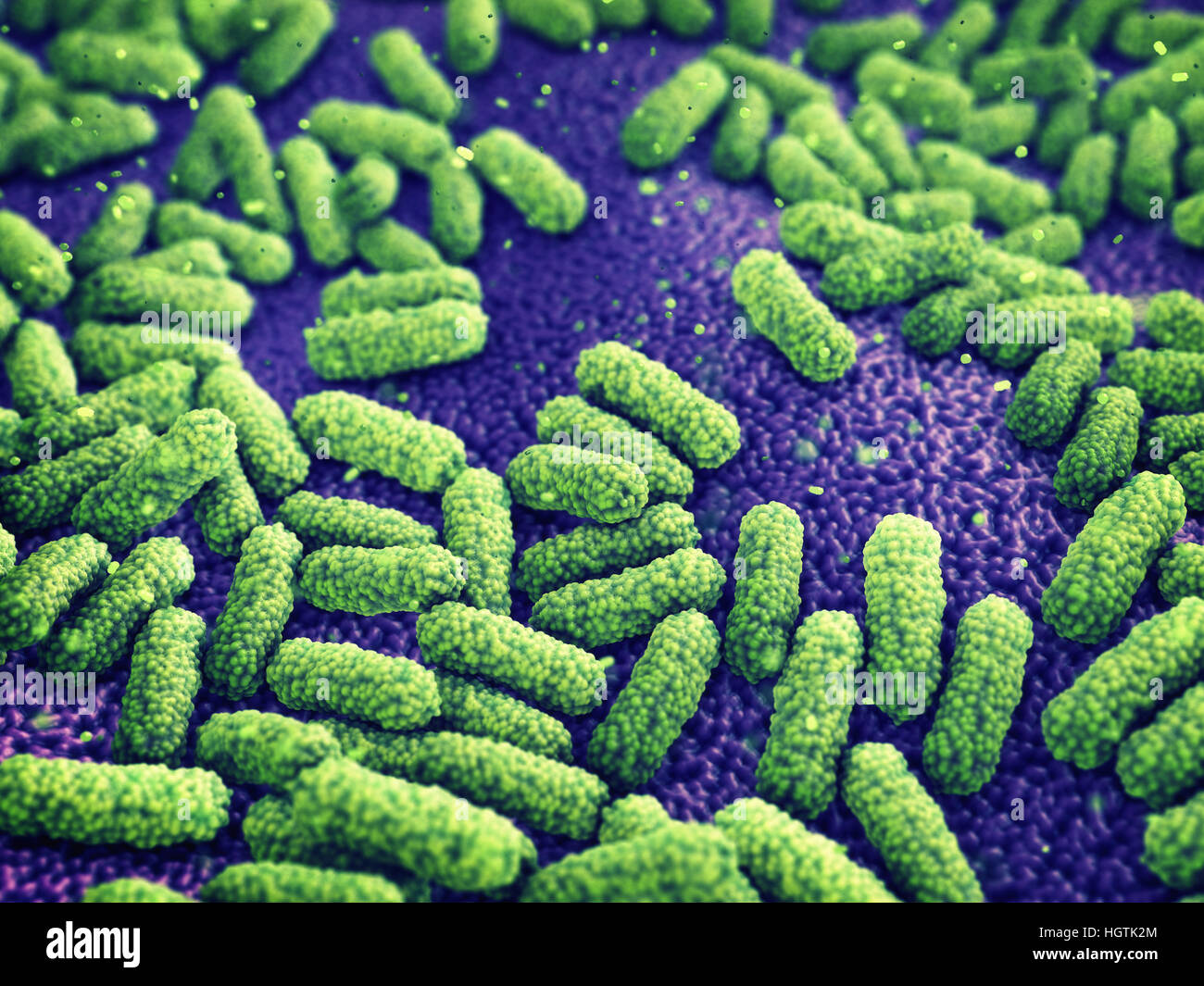 pathogen stockfotos pathogen bilder alamy. Black Bedroom Furniture Sets. Home Design Ideas