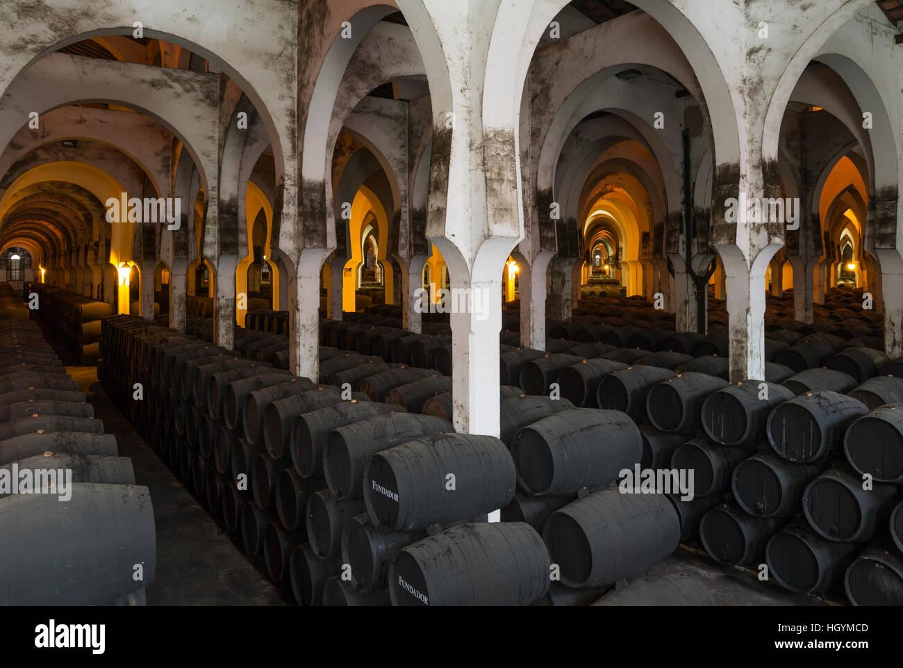 Eichenfässern im Weinkeller La Mezquita, Weingut Bodega Fundador Pedro Domecq, Jerez De La Frontera, Cadiz Stockbild