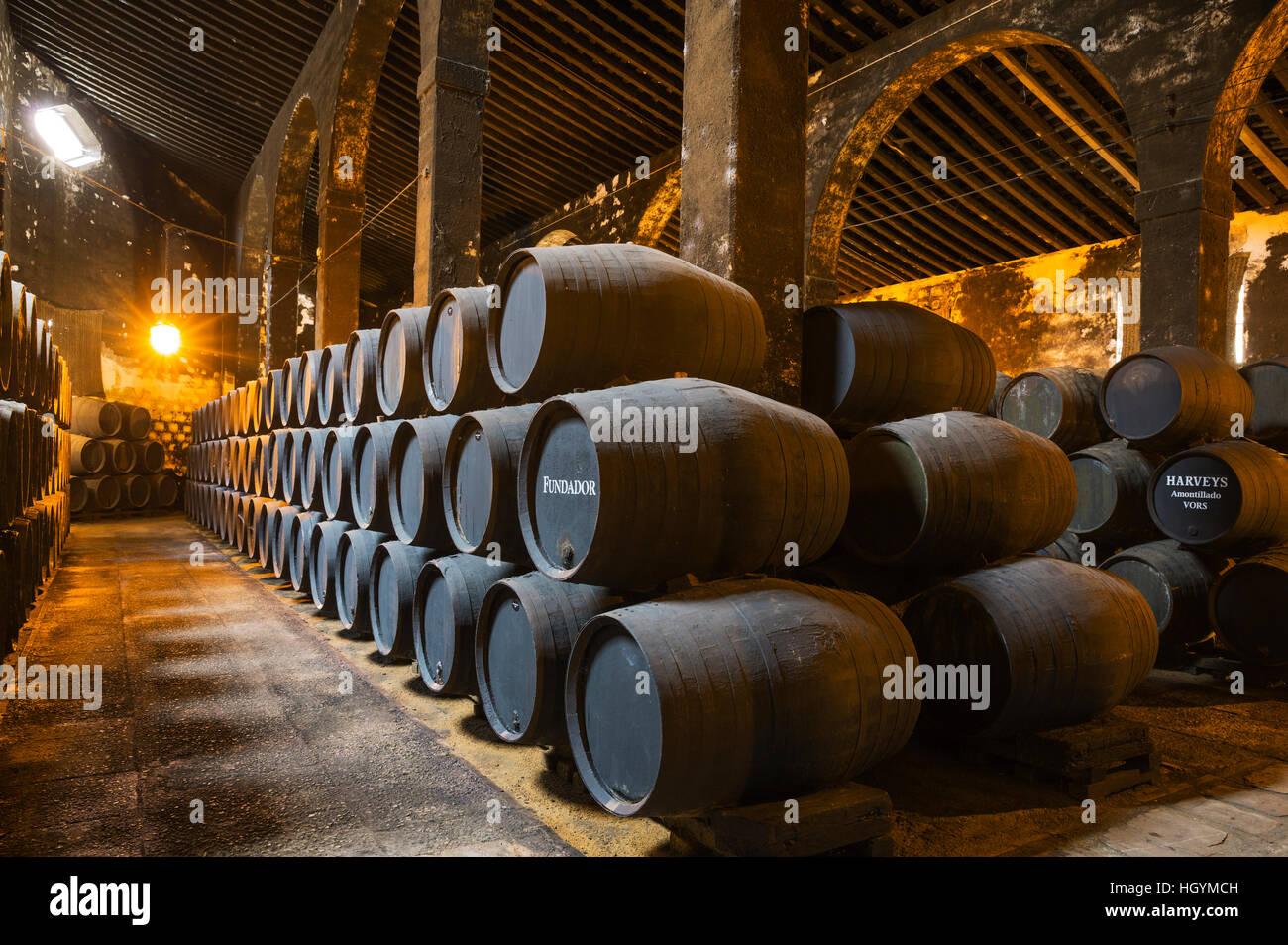 Gestapelte Eichenfässern in den Weinkeller, Weingut Bodega Fundador Pedro Domecq, Jerez De La Frontera, Provinz Stockbild