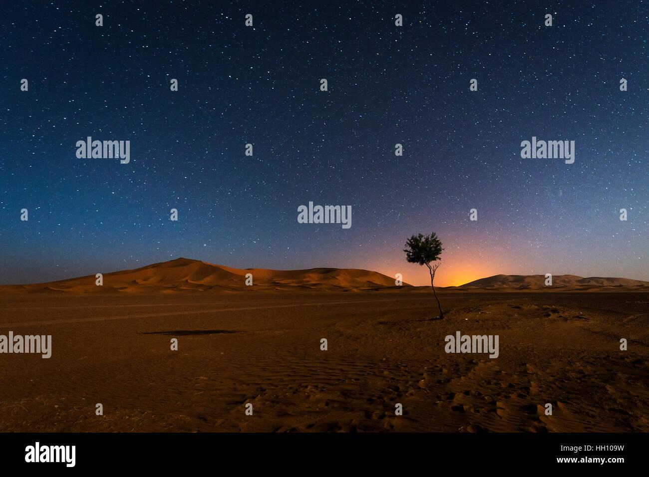 Die Dünen im Erg Chebbi in Marokko bei Nacht Wih den Himmel voller Sterne Stockbild