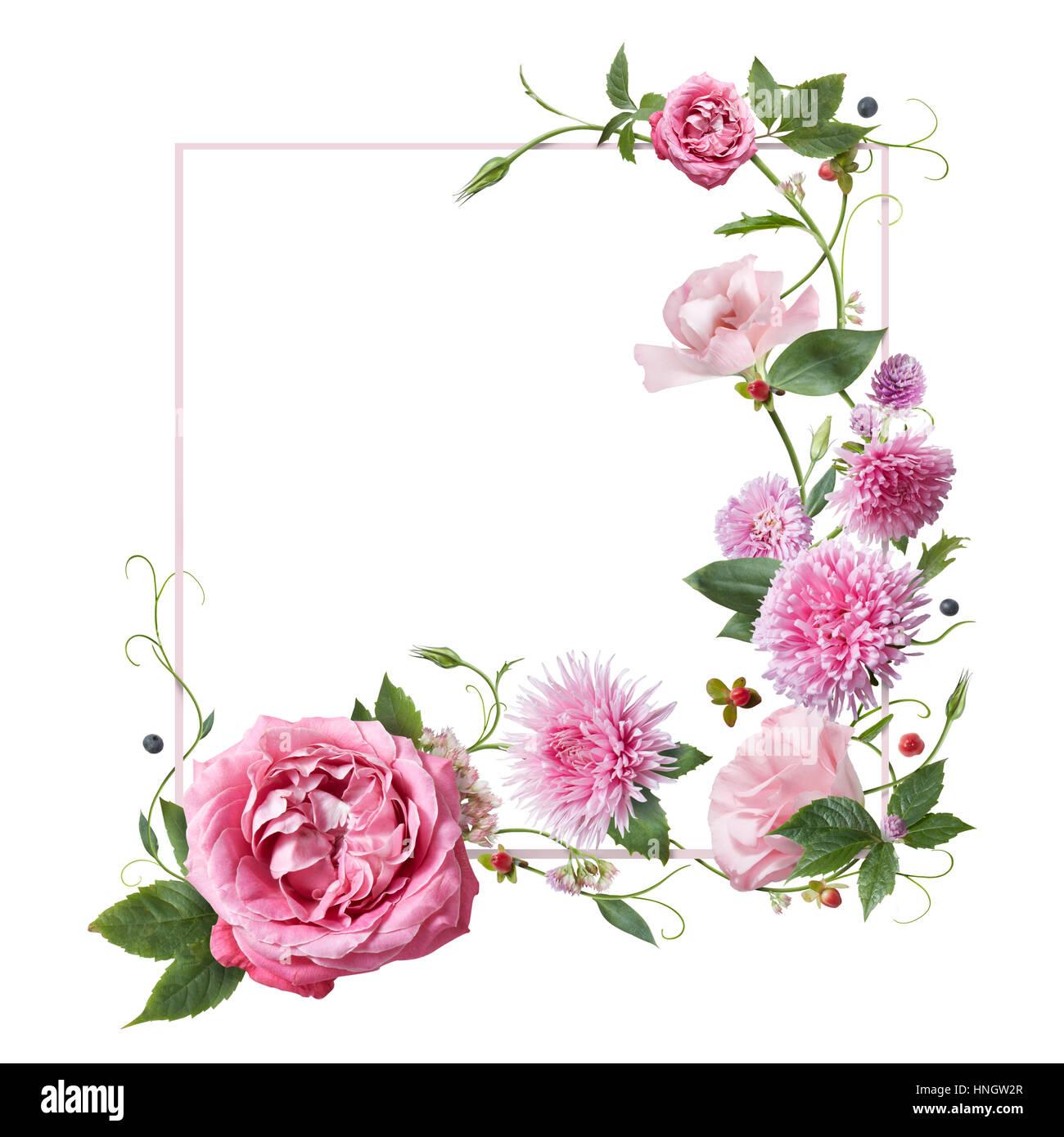 quadratischer rahmen rosa blumen auf wei em hintergrund stockfoto bild 133751263 alamy. Black Bedroom Furniture Sets. Home Design Ideas