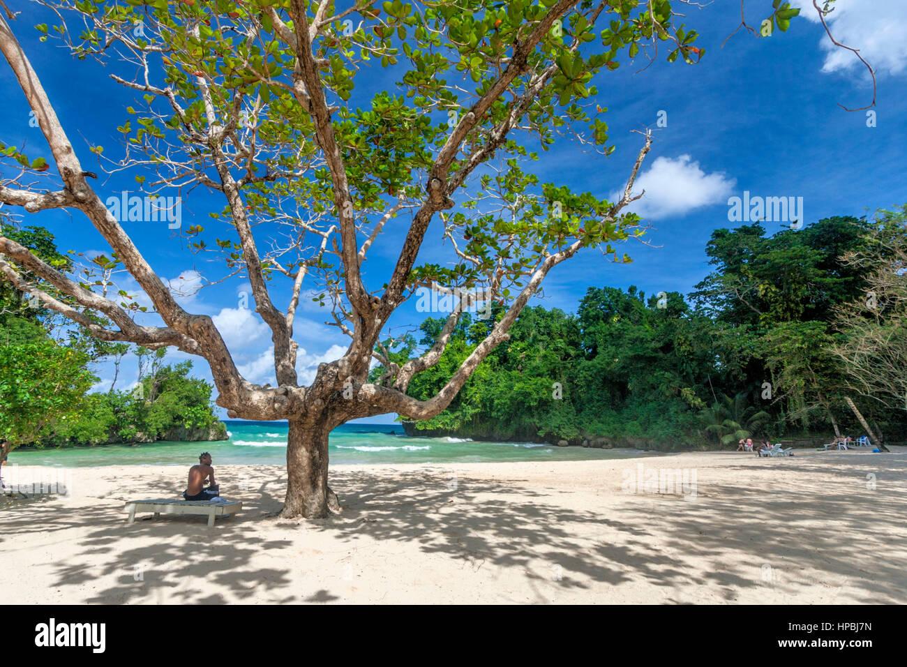 Jamaika-Port Antonio Frenchmens Cove Strand in einem tropischen Garten mit einem mineralischen Fluss Stockbild