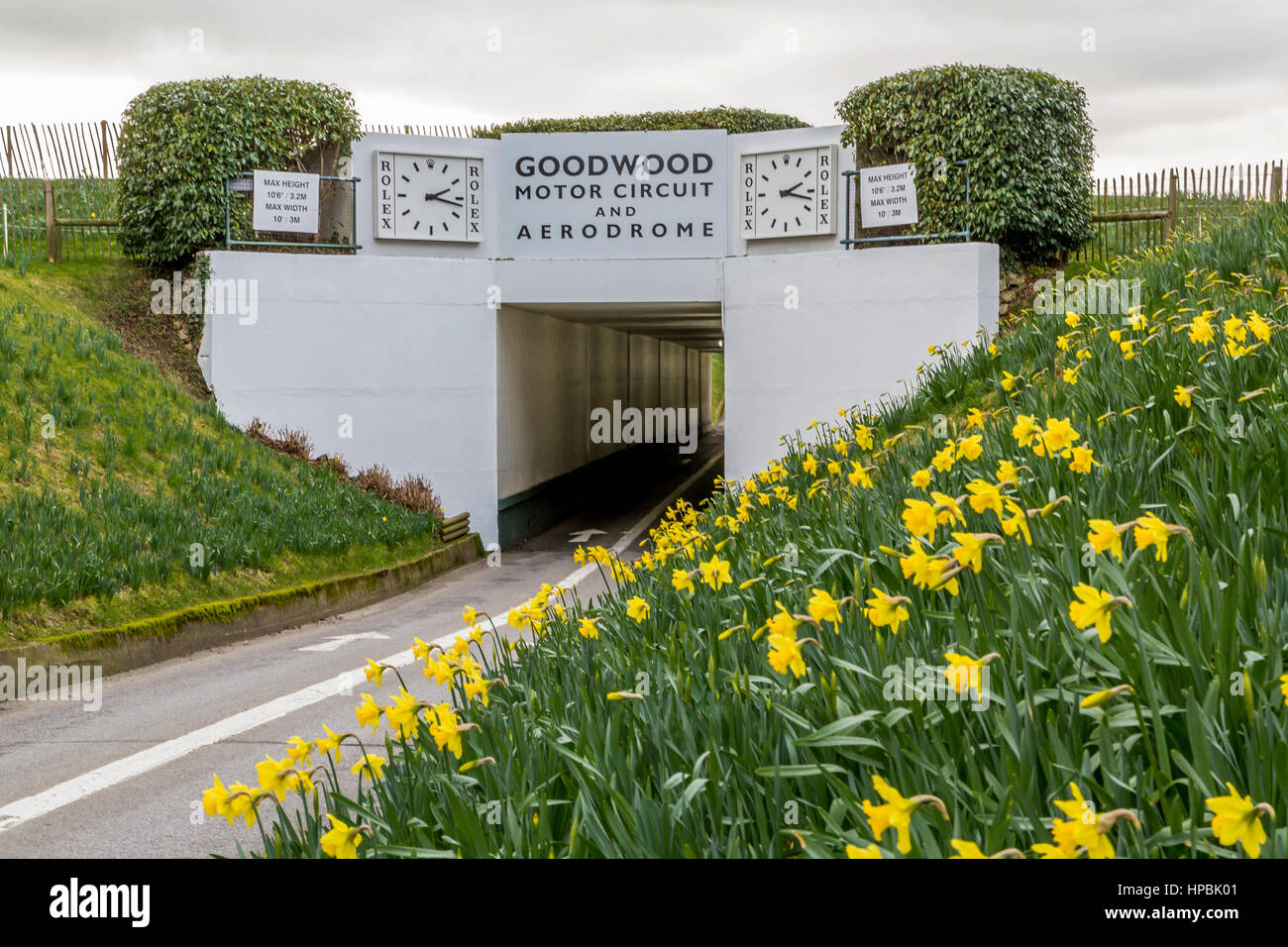 Goodwood Motor Racing Circuit tunnel Eingang, West Sussex, England, Großbritannien Stockbild