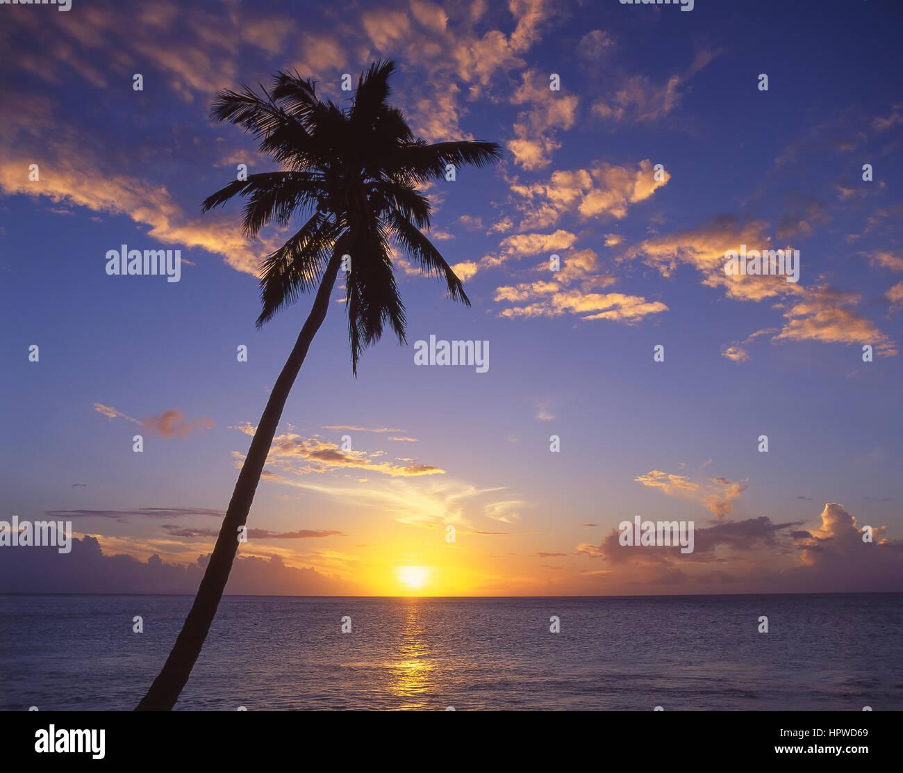 Tropischer Sonnenuntergang, Darkwood Beach, Saint Mary Parish, Antigua, Antigua und Barbuda, kleine Antillen, Caribbean Stockbild
