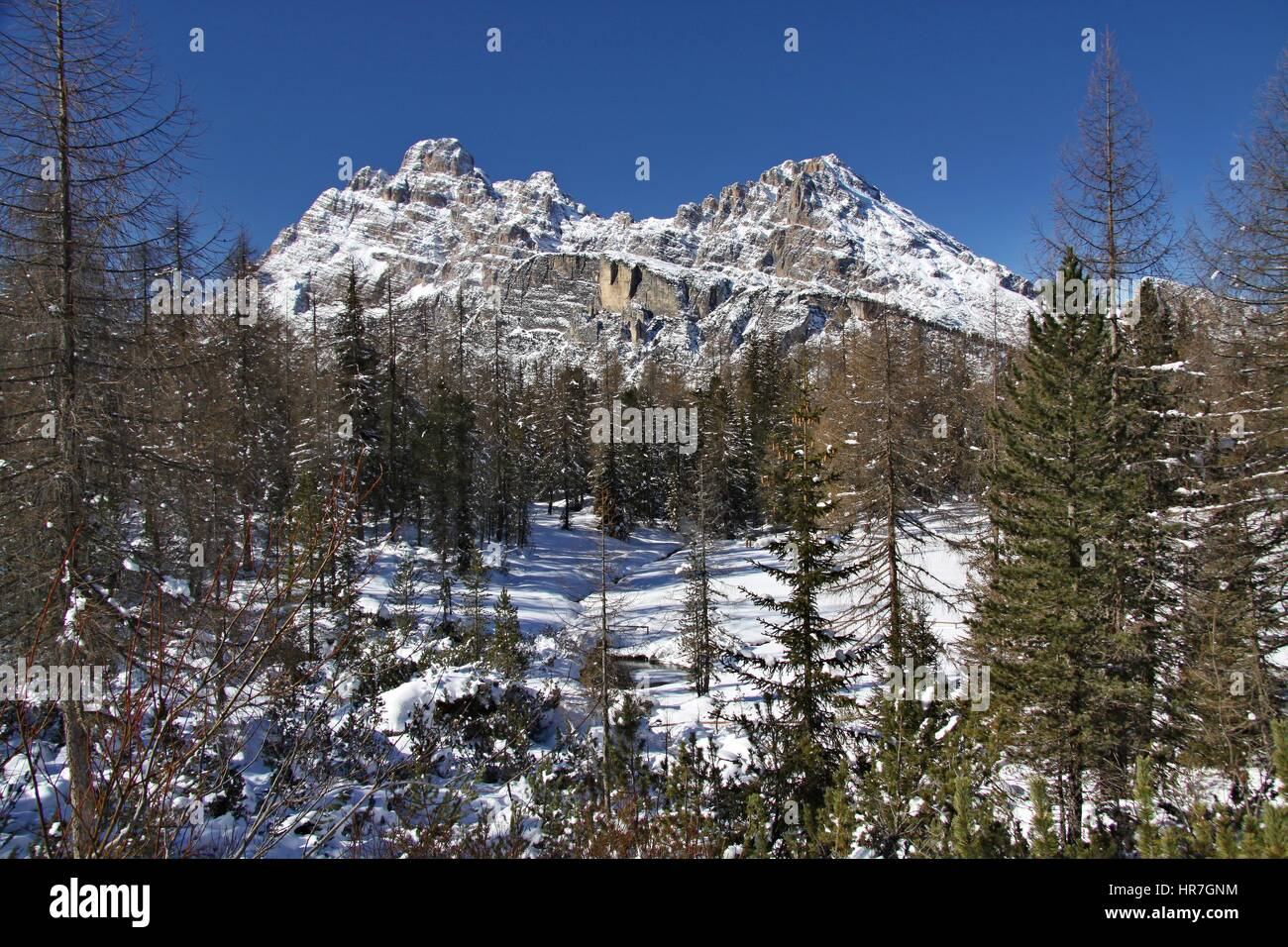 Dolomiten im Winter, Blick vom Wandern Trail Ciadin Della Neve, Italien-ID Fotografie Z Fotobanky: 585999350 Stockbild
