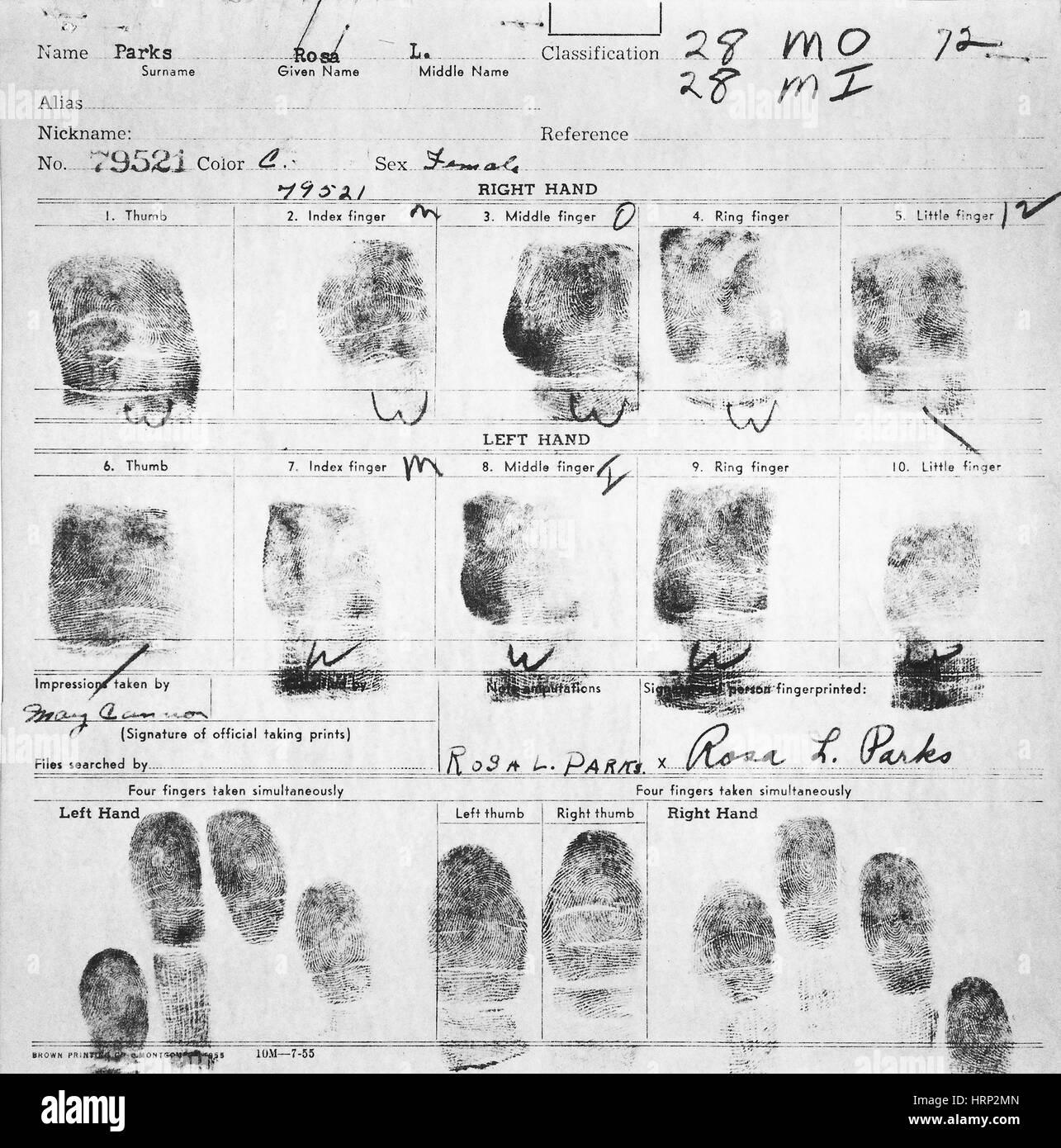Fingerabdruck-Karte von Rosa Parks, 1955 Stockbild