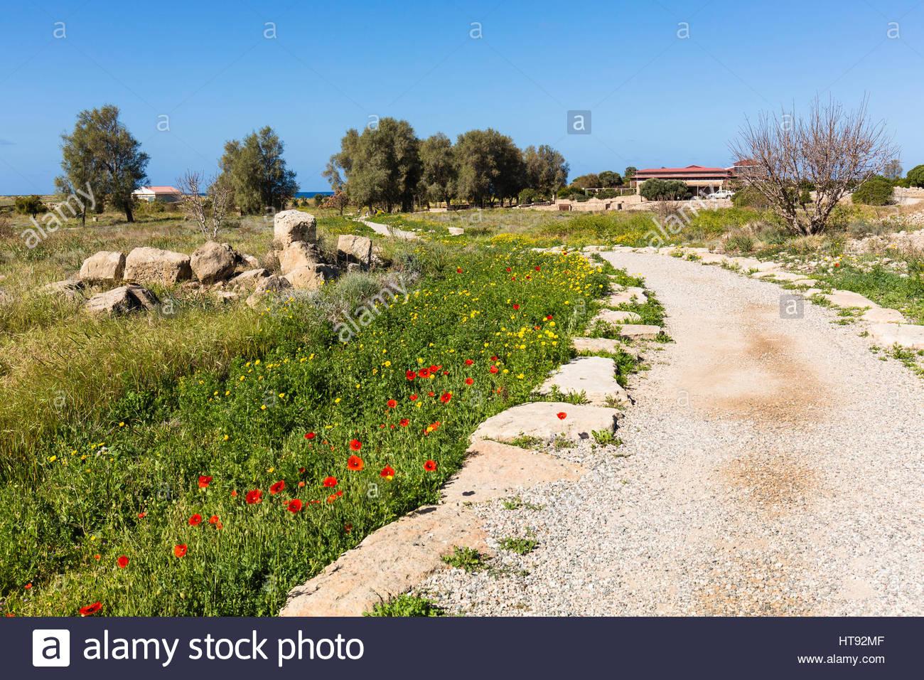 Ansicht der zerstörten römischen Stadt Paphos archäologische Park, Paphos, Zypern Stockbild