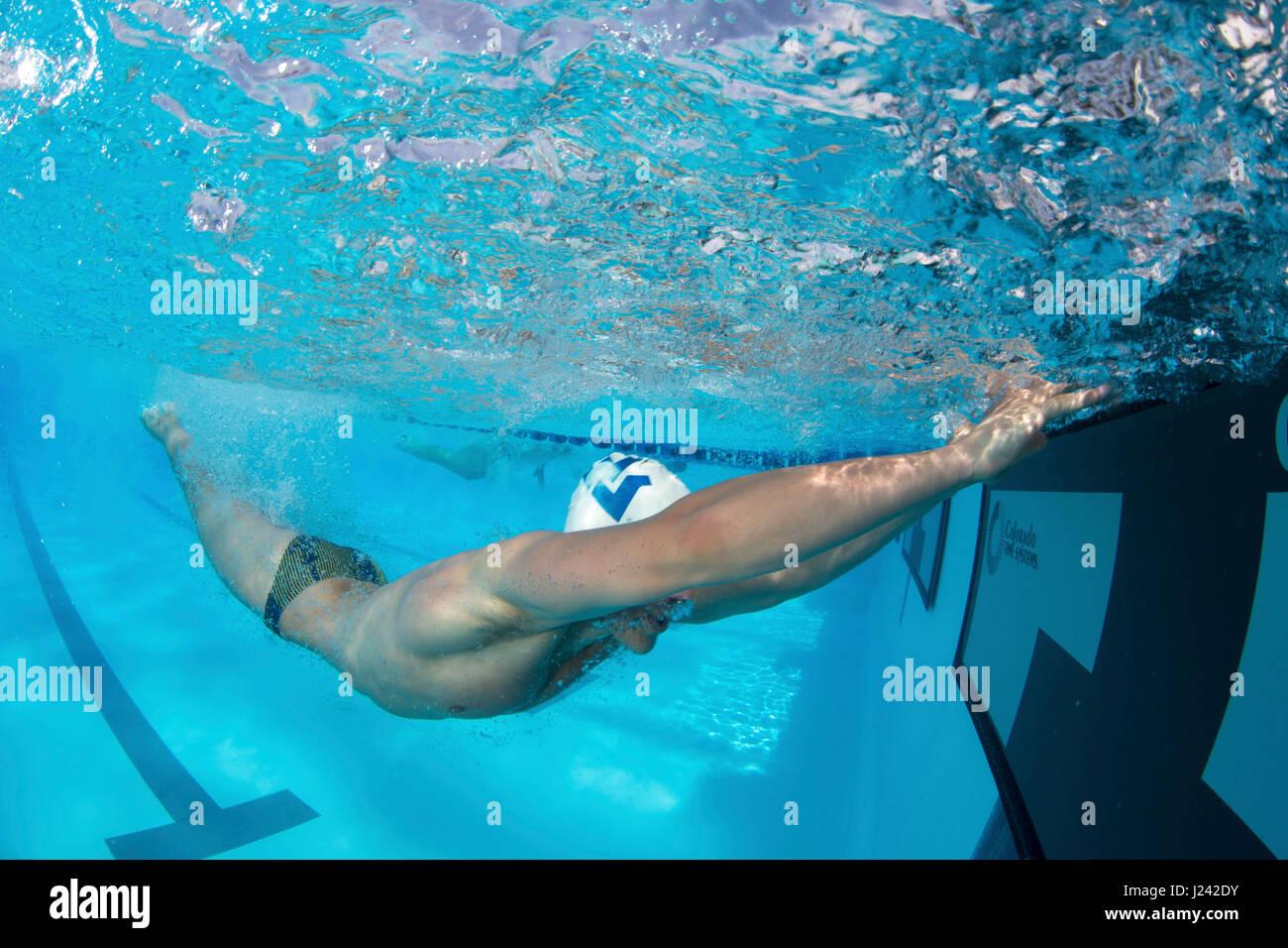 Orange Schüssel schwimmen Classic Stockbild