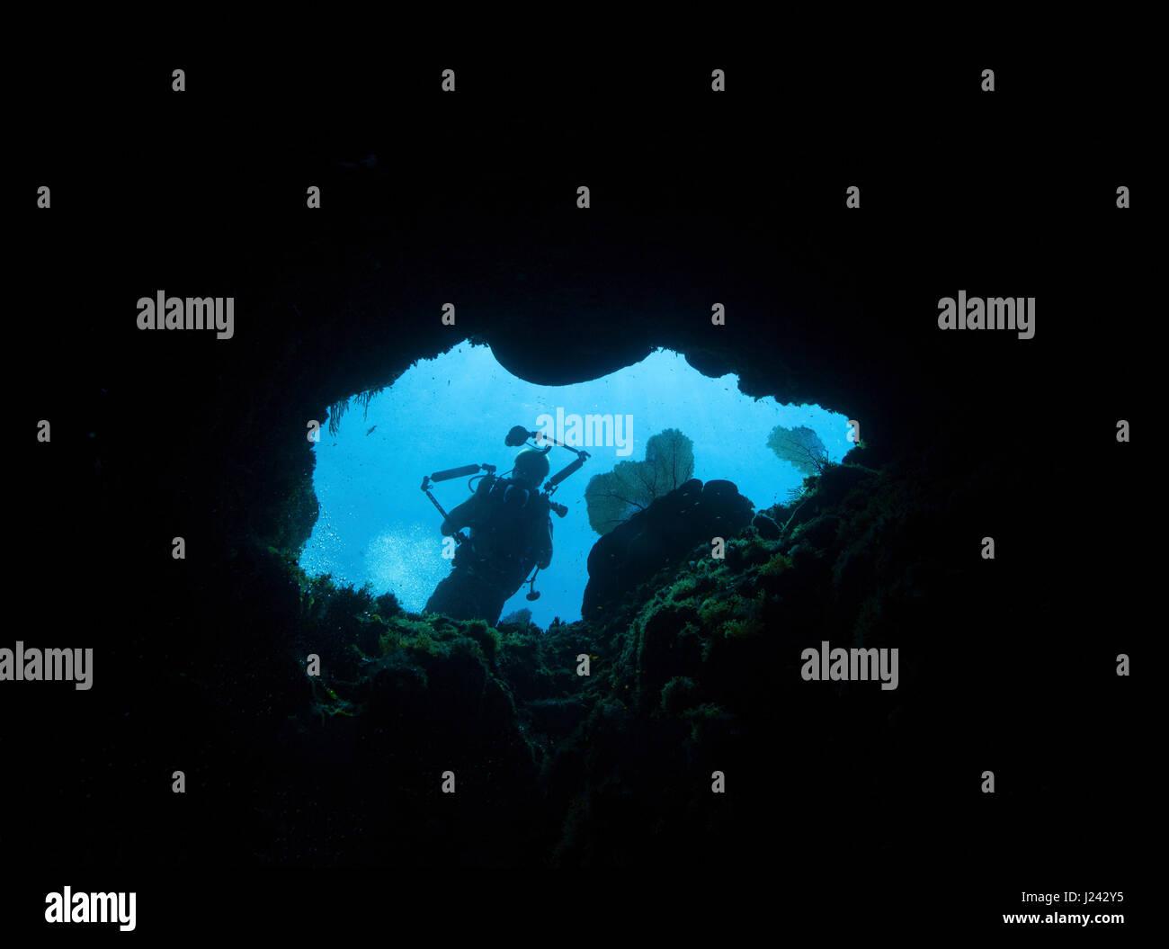 Auf der Suche nach oben durch Loch im Riff, Little Cayman Stockbild