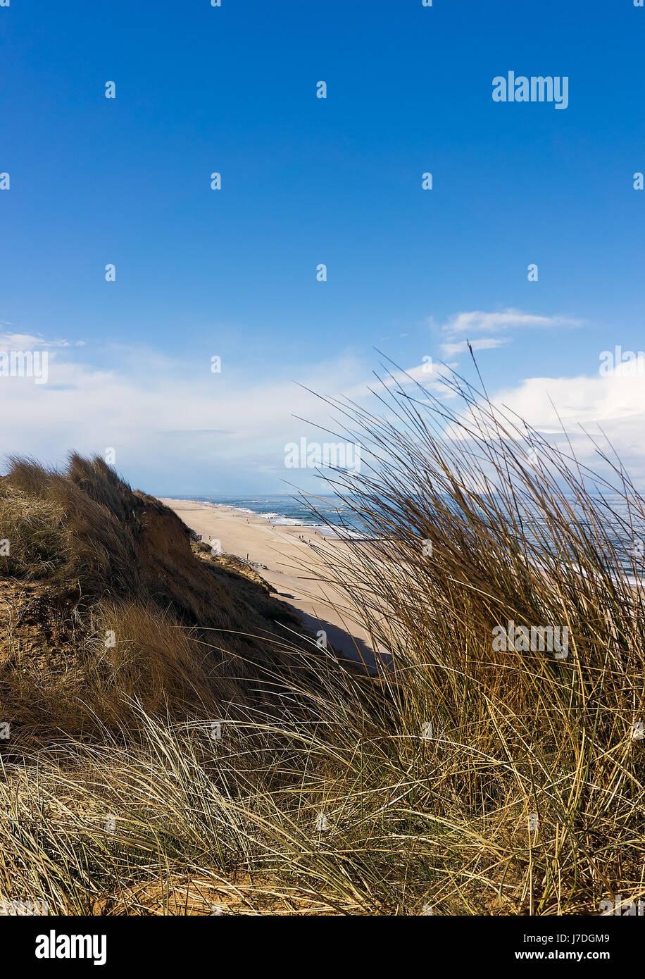Strand und Meer - Sylt, Deutschland Stockbild
