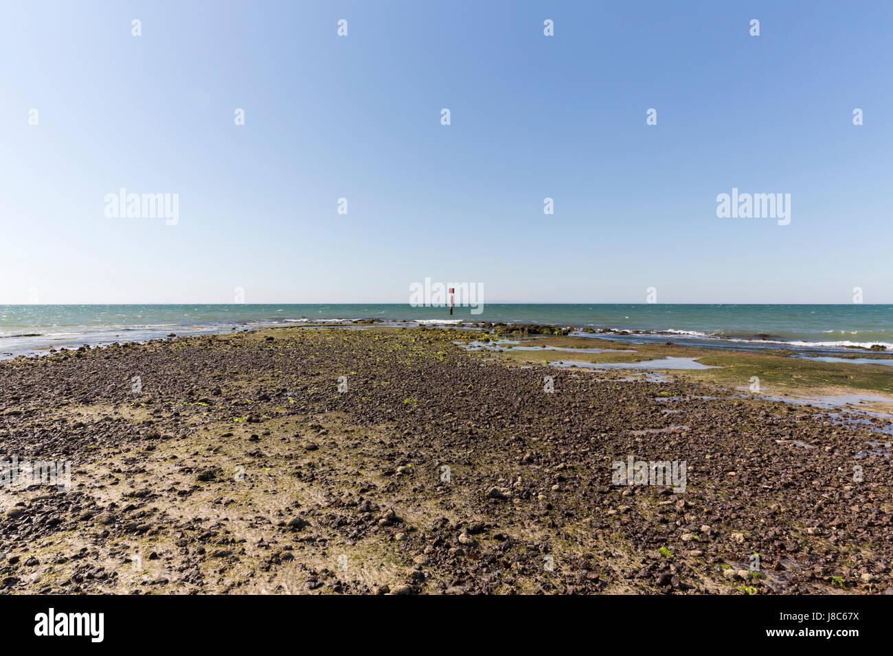 Strand mit Muds. Stockbild