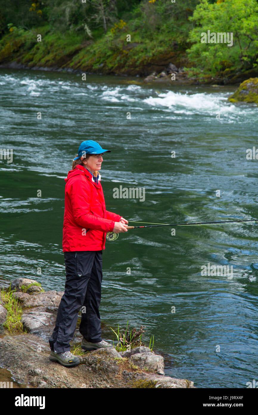 Fliegenfischen McKenzie River, Greenwood County Park Lane County, Oregon Stockbild