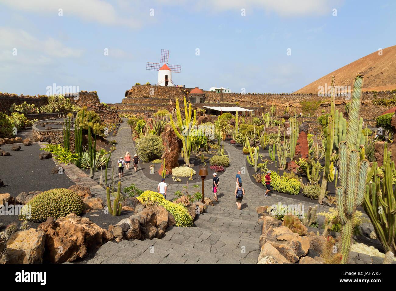 Kakteengarten von Lanzarote oder Jardin de Cactus, entworfen von dem lokalen Künstler Cesar Manrique, Lanzarote, Stockbild