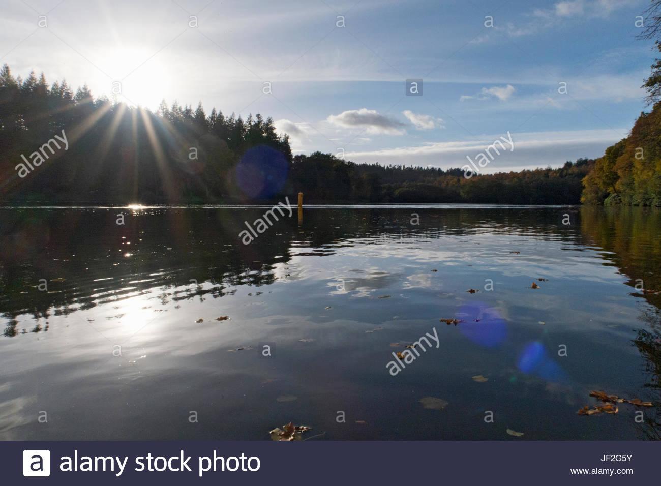 Sonne durch über Herbst Bäume See Stockbild
