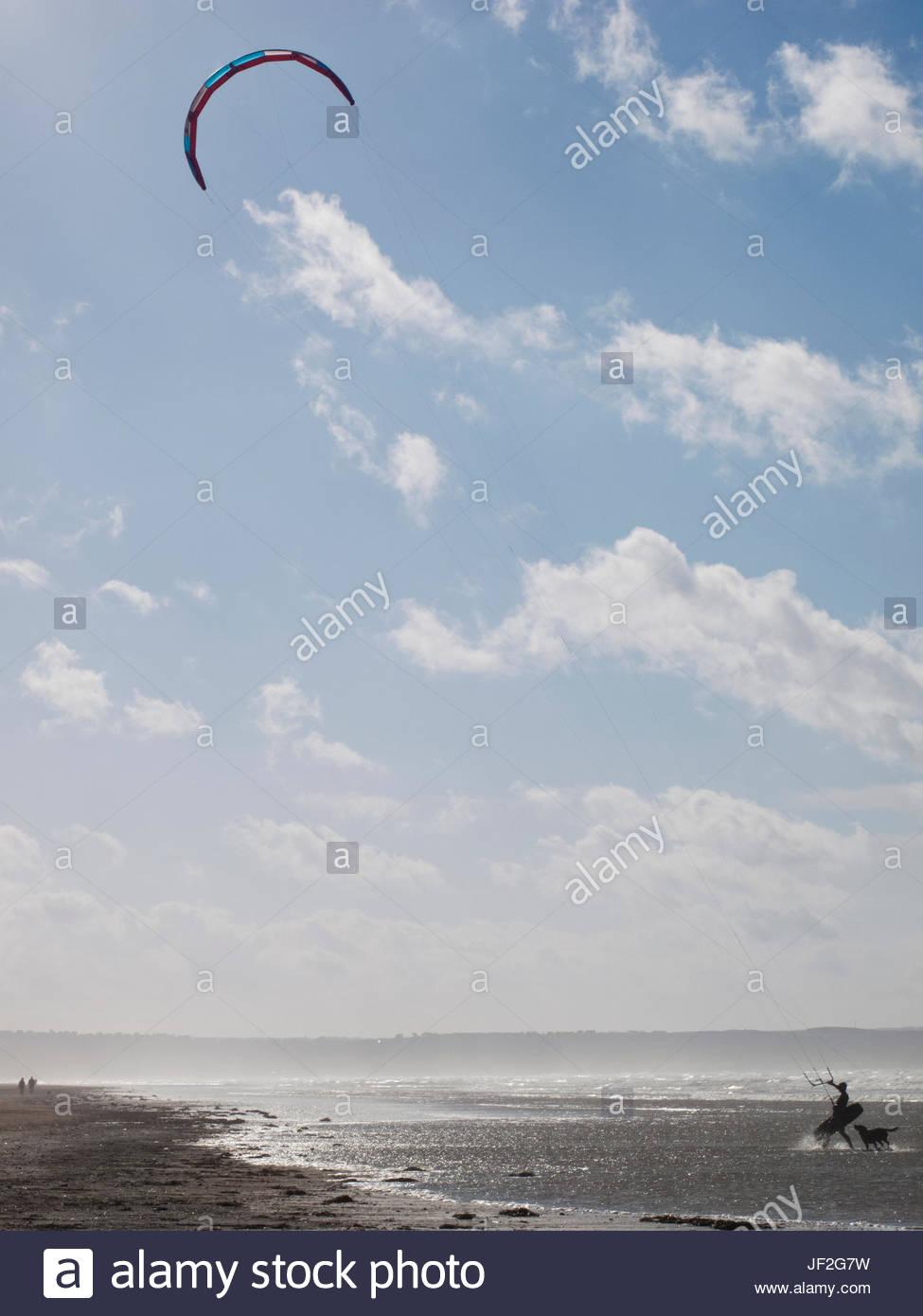 Kitesurfer mit Hund am Strand Küste Stockbild