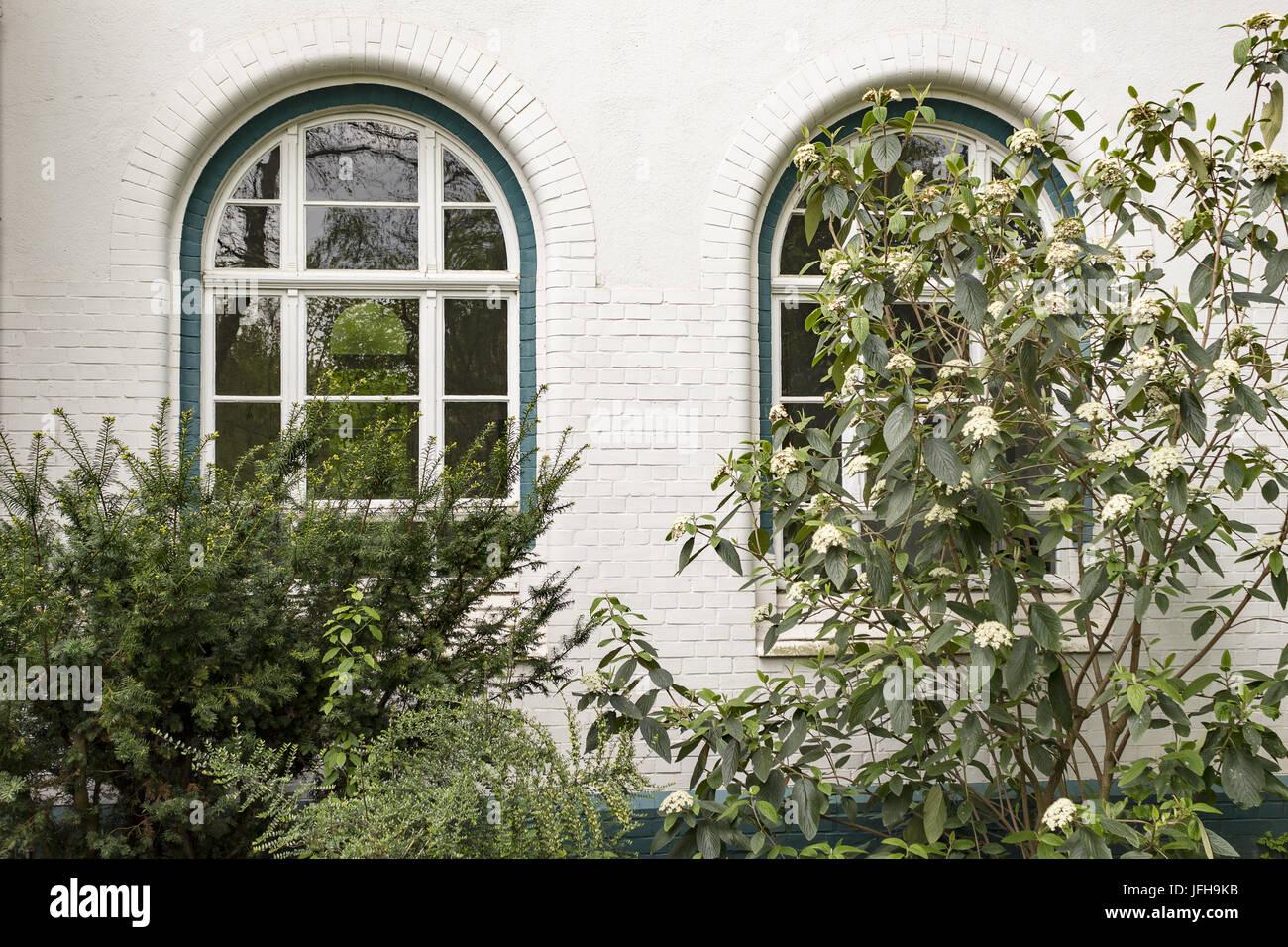 2 nostalgische Windows von Sträuchern abgedeckt Stockbild