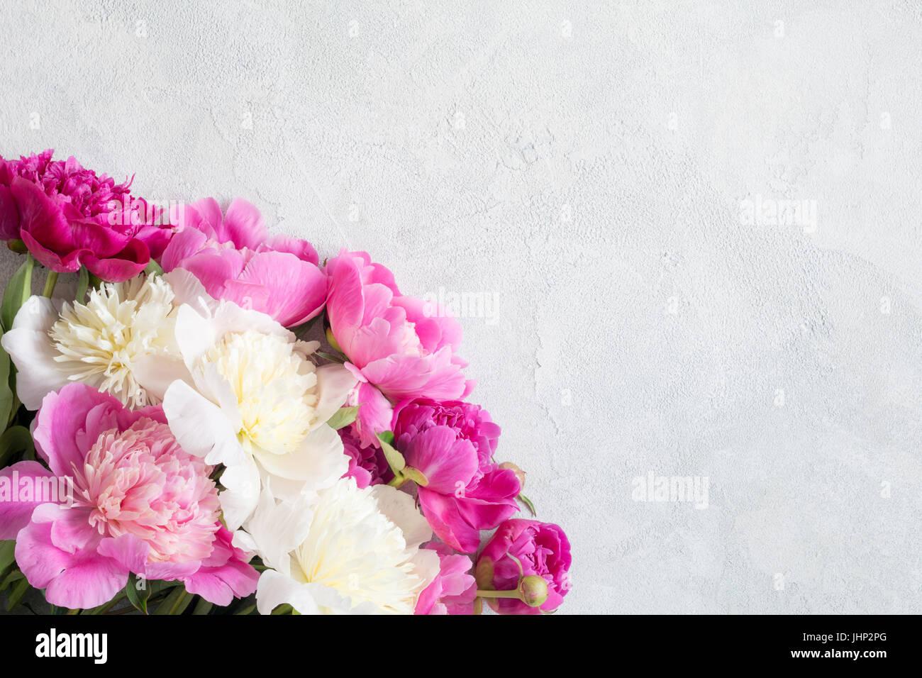 blumen rahmen hintergrund mit sch nen rosa violett und wei pfingstrosen auf alten wei en holz. Black Bedroom Furniture Sets. Home Design Ideas