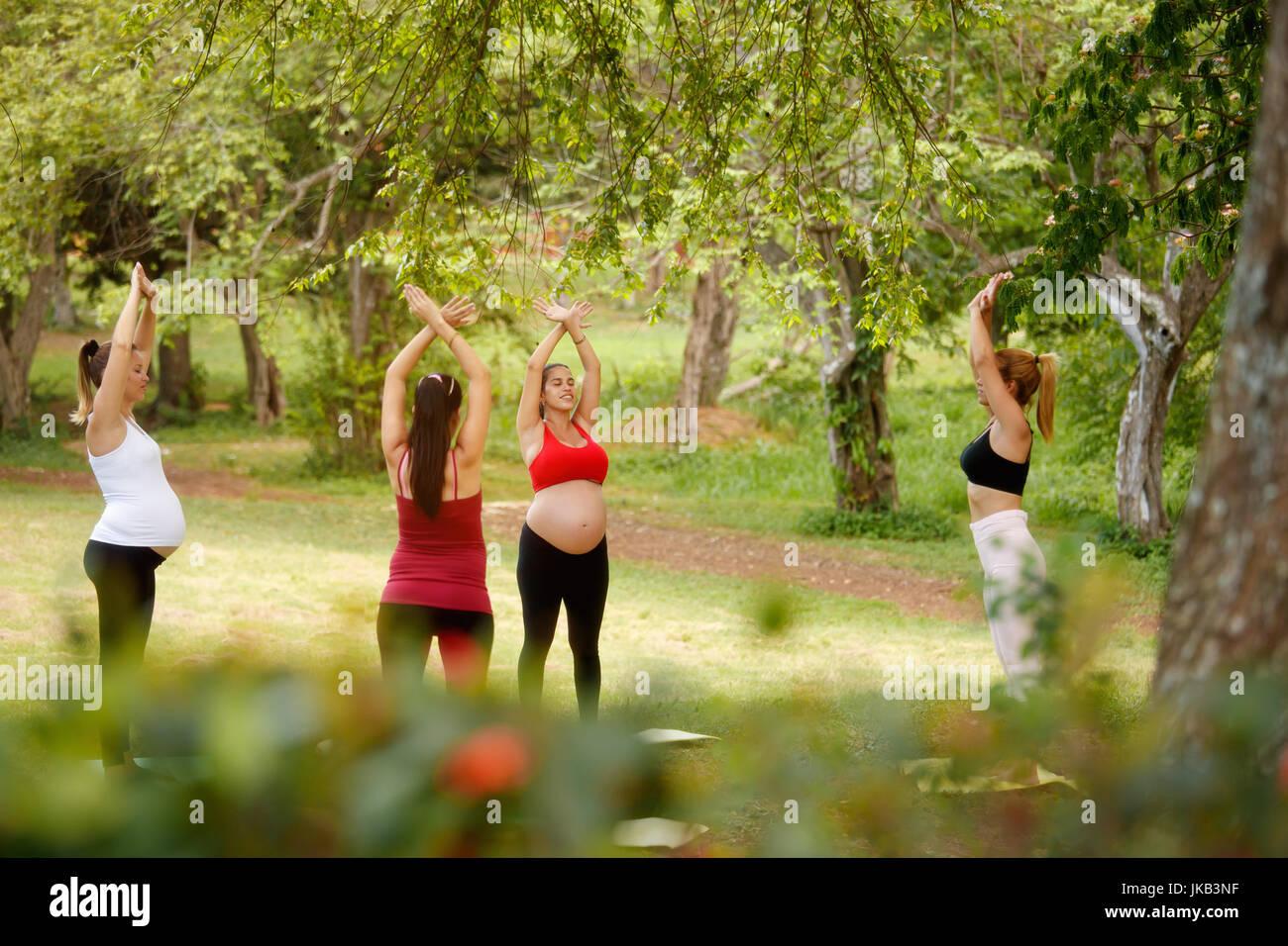 Schwangere Frauen, Gruppe von Müttern, die training mit Trainer Fitness-Übungen und Yoga während Stockbild