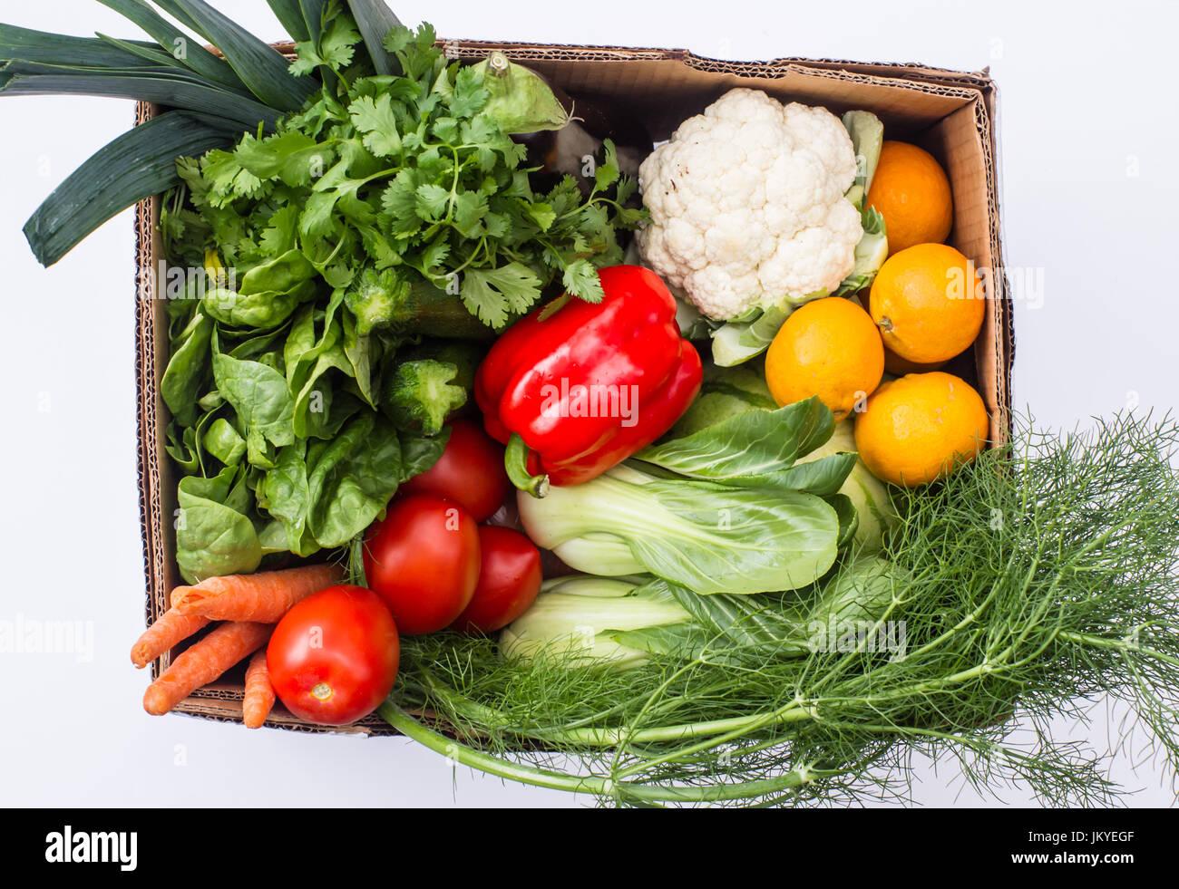 Ein Karton auf einem weißen Hintergrund gefüllt mit frischem Obst und Gemüse vom Wochenmarkt, USA Stockbild
