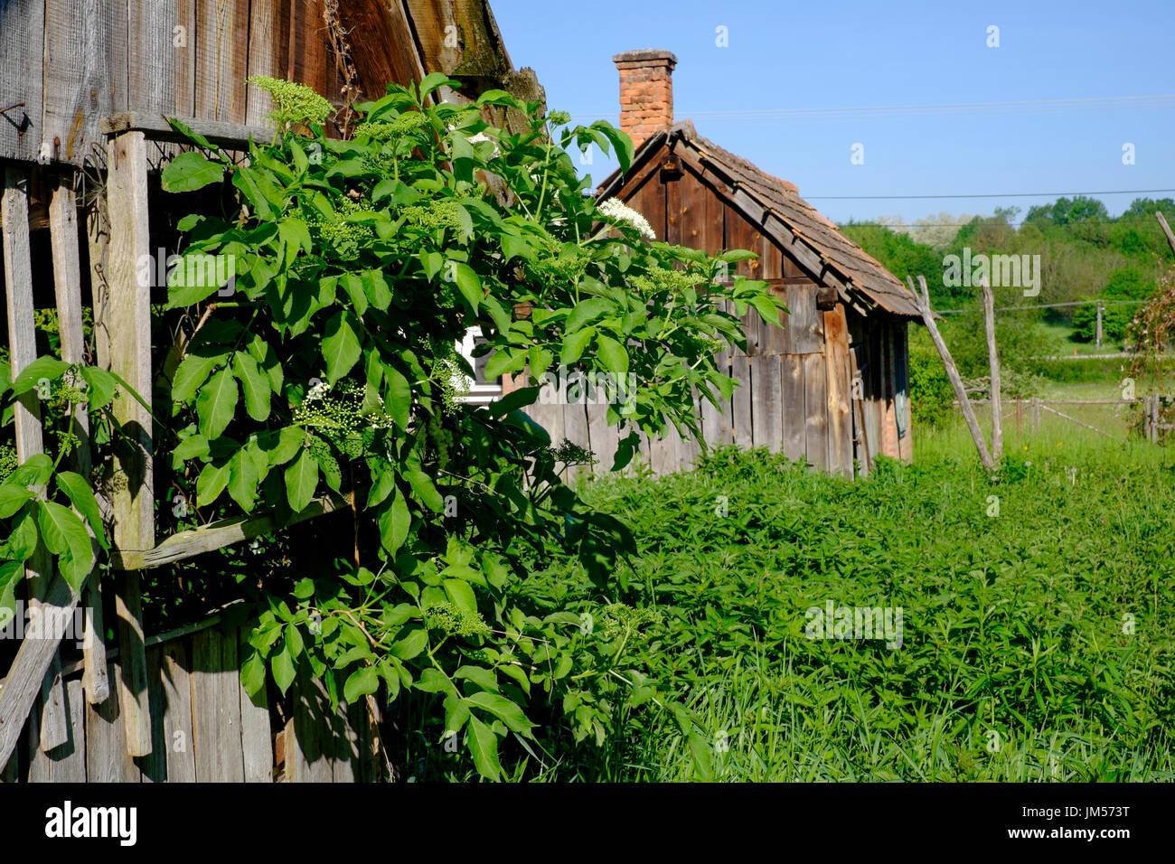 Sommerküche Haus : Haus möbel sommerküche hausumbau planen galerie hausumbau