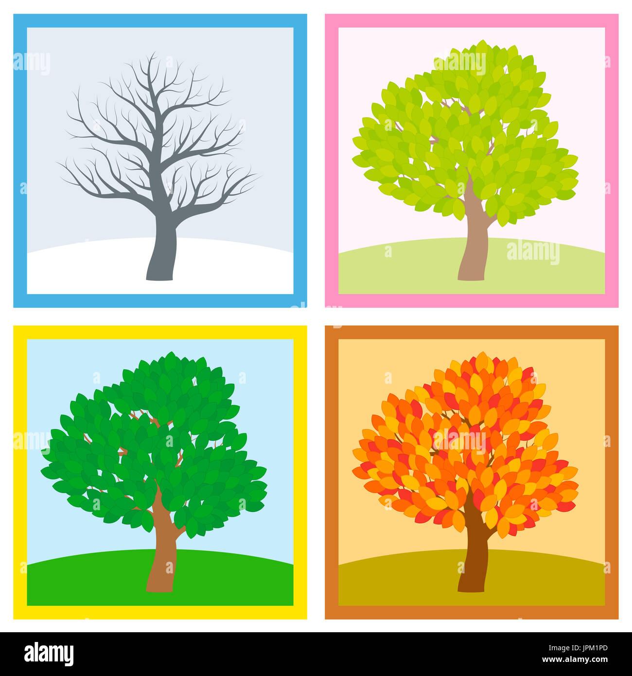 tree in four seasons spring stockfotos & tree in four