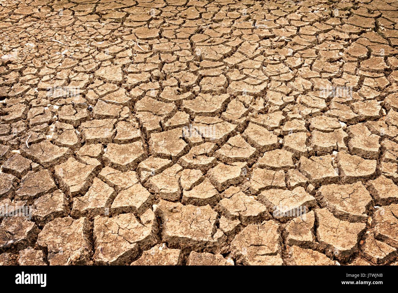 Braune Textur der Polygone der Austrocknung durch Dürre verursachten Stockbild
