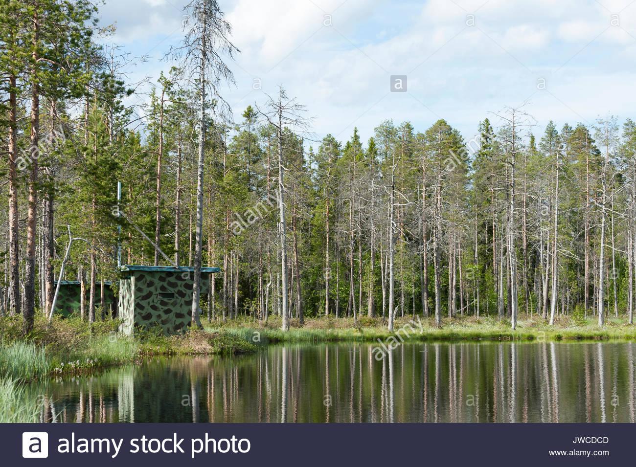 Foto versteckt auf einem See. Stockbild