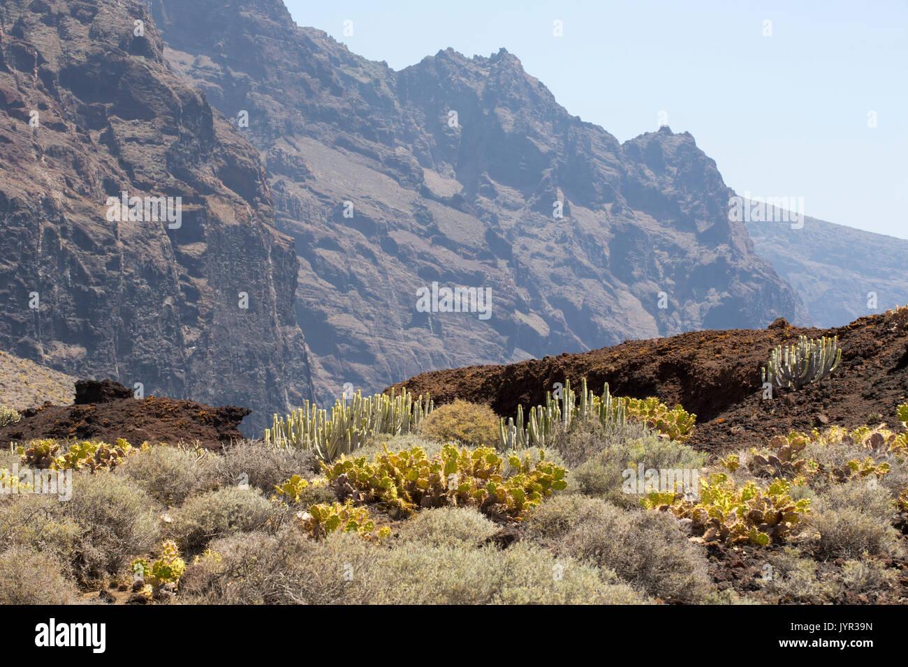 Punta de Teno, dem westlichsten Punkt auf Teneriffa auf den Kanarischen Inseln. Stockbild