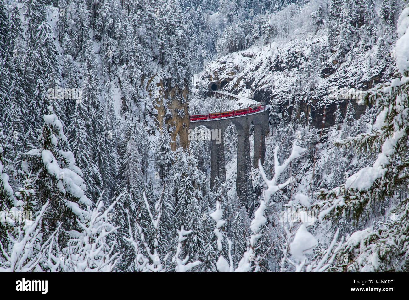 Bernina Express Zug auf Landwasser Viadukt Filisur, Schweiz Stockbild