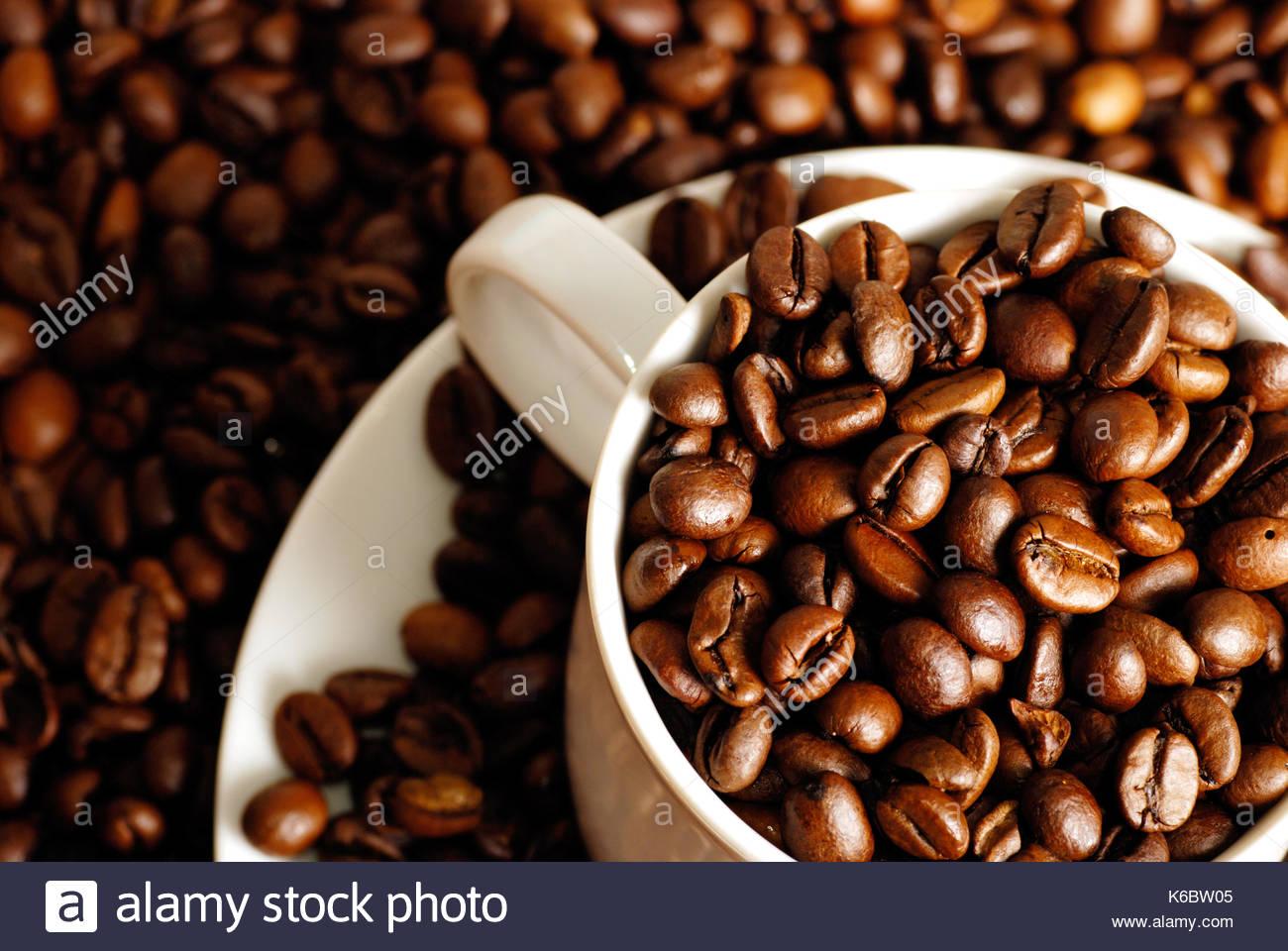 Kaffee Tasse mit Kaffee Samen im Inneren, sitzen auf einer Etage der Kaffeebohnen Stockbild