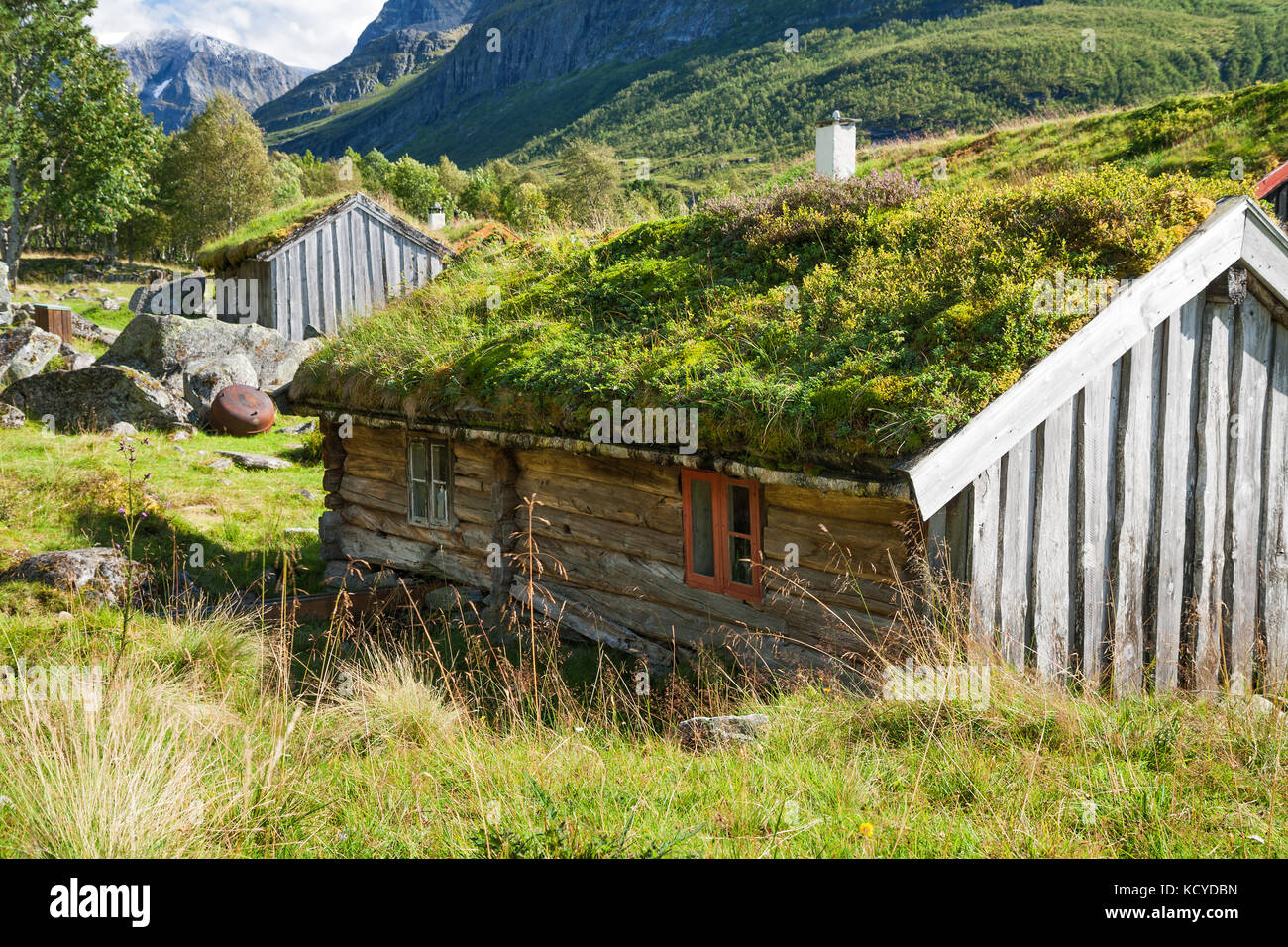 scandinavian old traditional house grass stockfotos. Black Bedroom Furniture Sets. Home Design Ideas