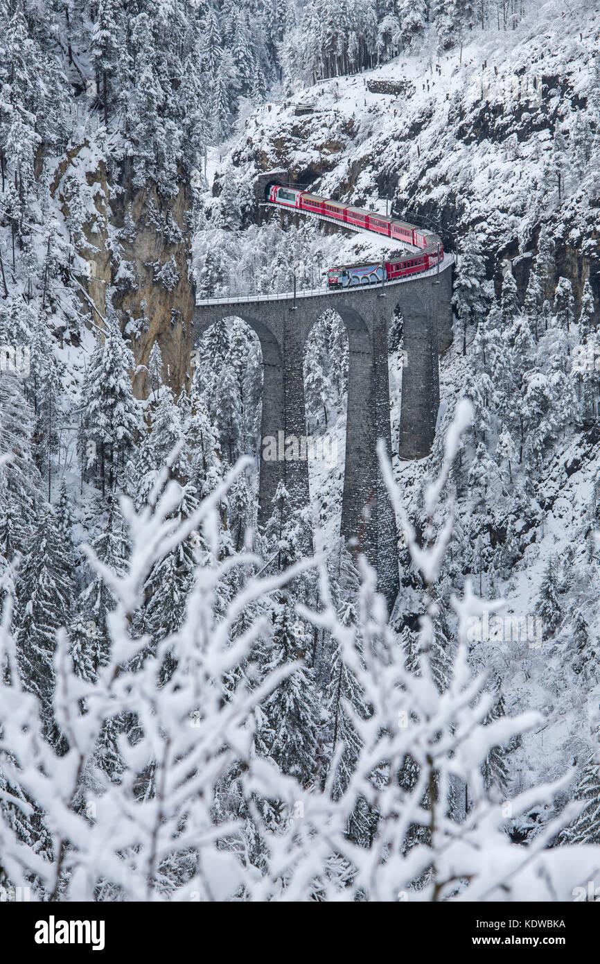 Bernina Express Zug auf Landwasser Viadukt von schneebedeckten Wäldern umrahmt filisur Albulatal Kanton Graubünden Stockbild