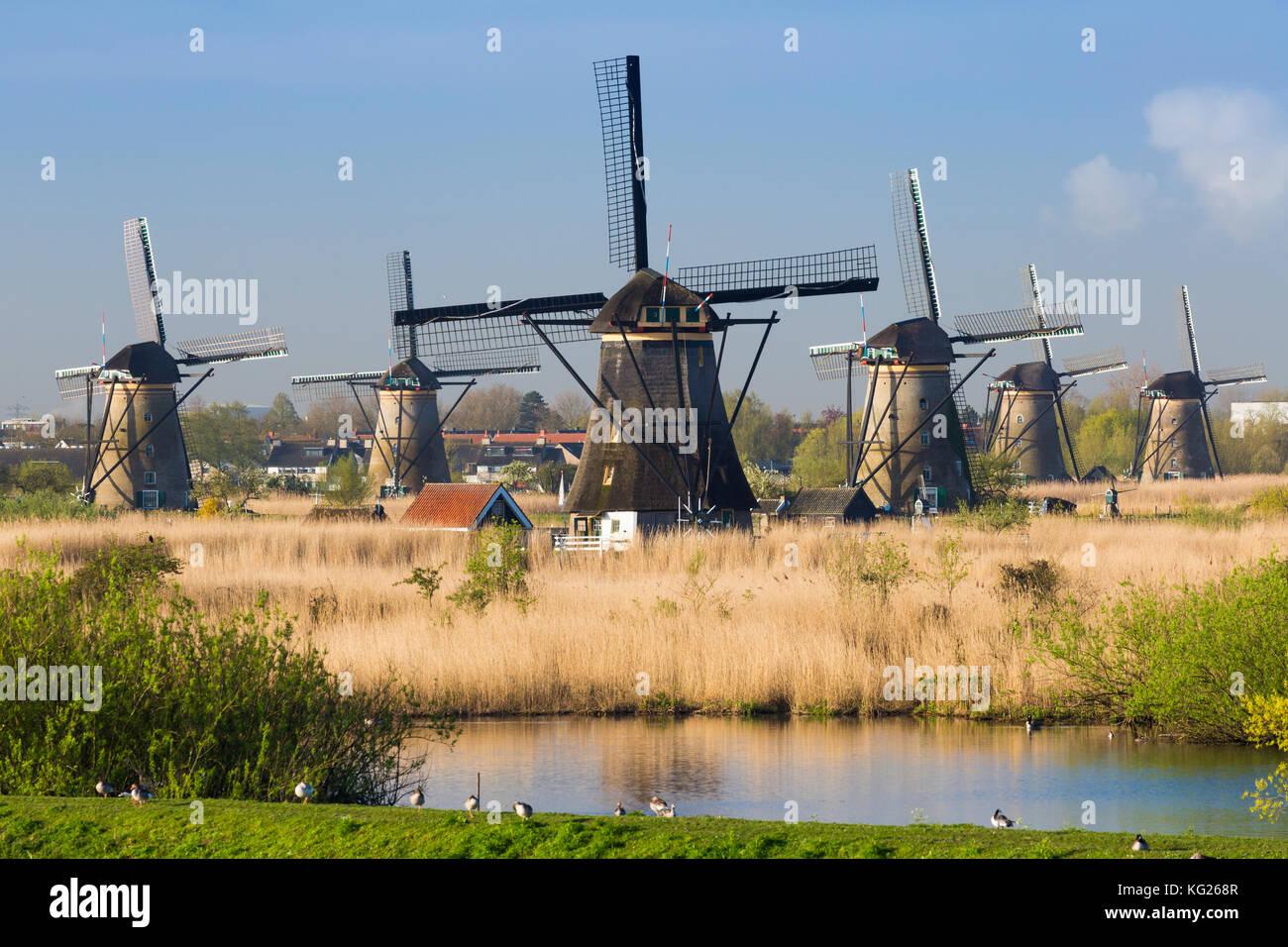 Windmühlen von Kinderdijk, Weltkulturerbe der UNESCO, Niederlande, Europa Stockbild