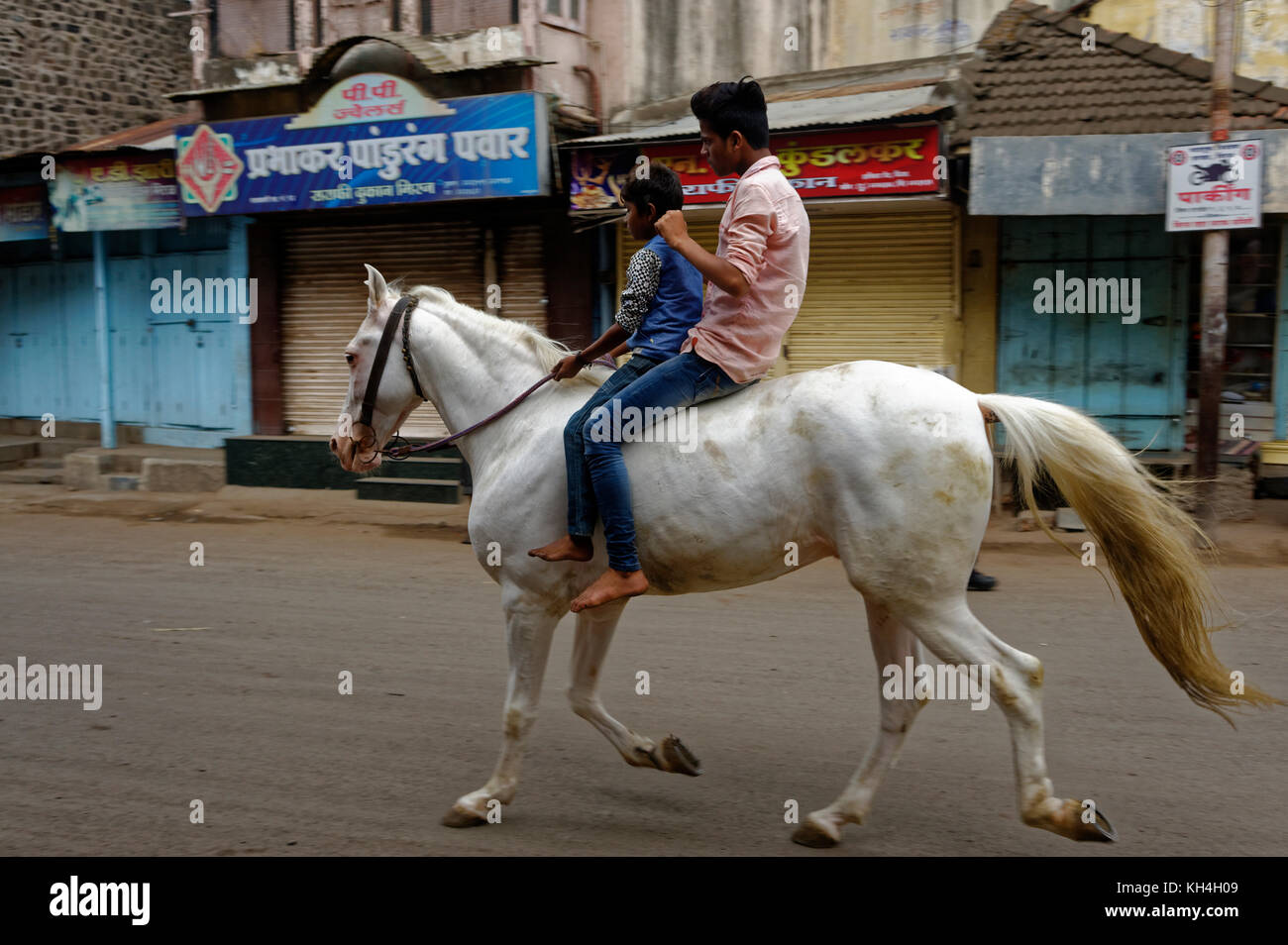 Jungen zu Pferd, miraj, Maharashtra, Indien, Asien Stockbild