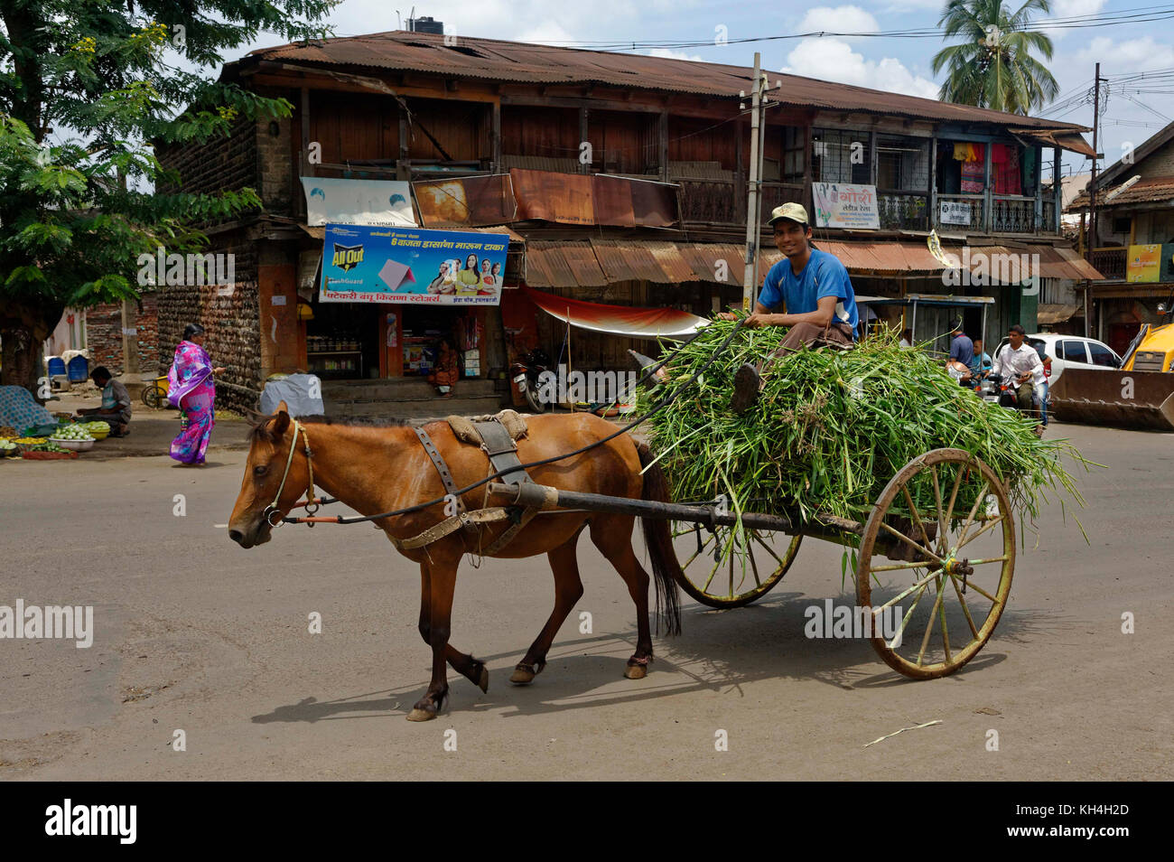 Pferdewagen mit Gras, Kolhapur, Maharashtra, Indien, Asien Stockbild