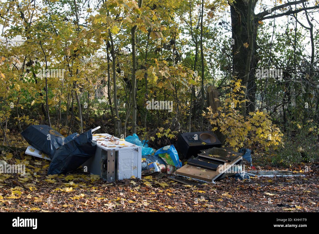 Sperrigen Müll auf der Seite liegend auf einem Pfad in ein Stück Wald in Berlin, Deutschland, 17. November Stockbild