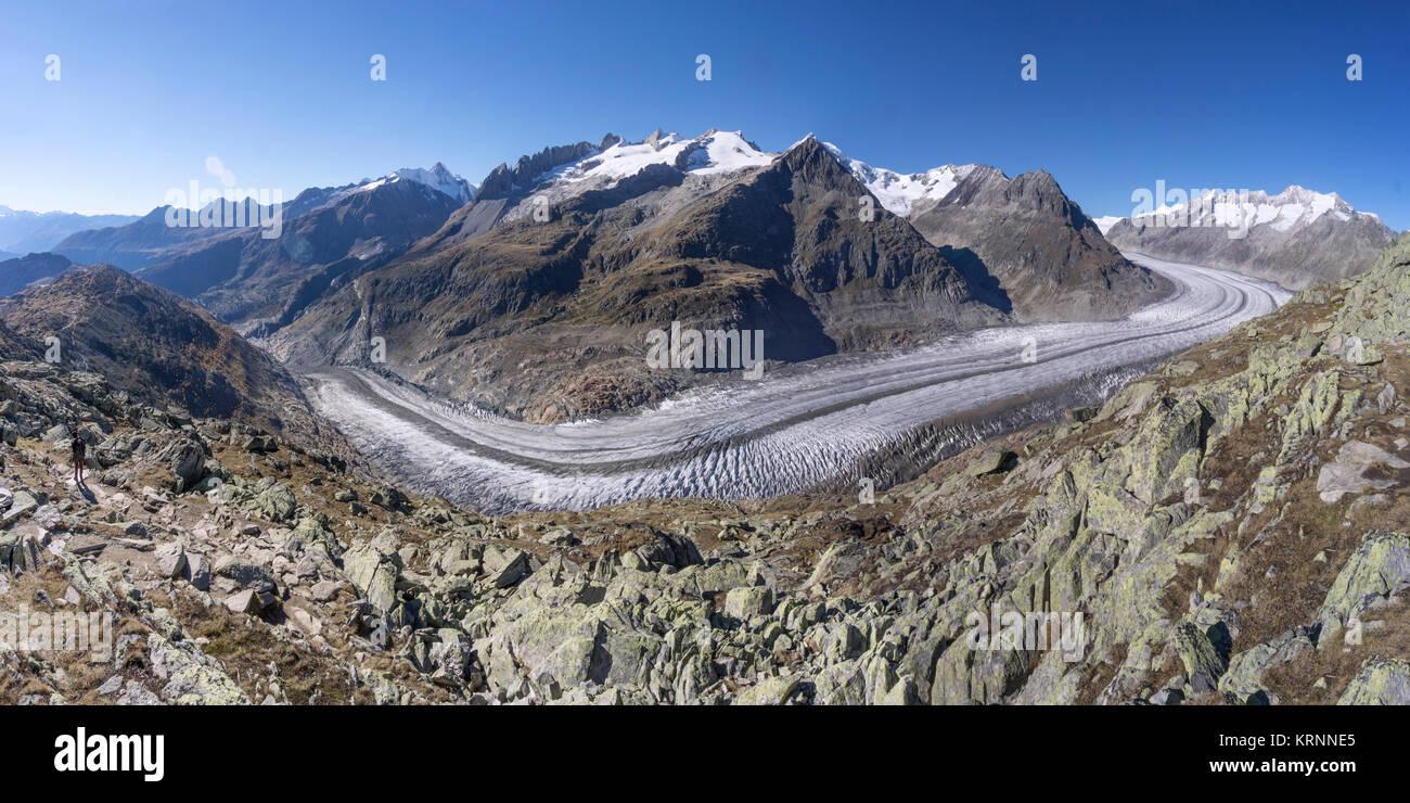 Panorama des Aletschgletschers im Herbst, schmelzende Gletscher, Schweizer Alpen, Schweiz Stockbild