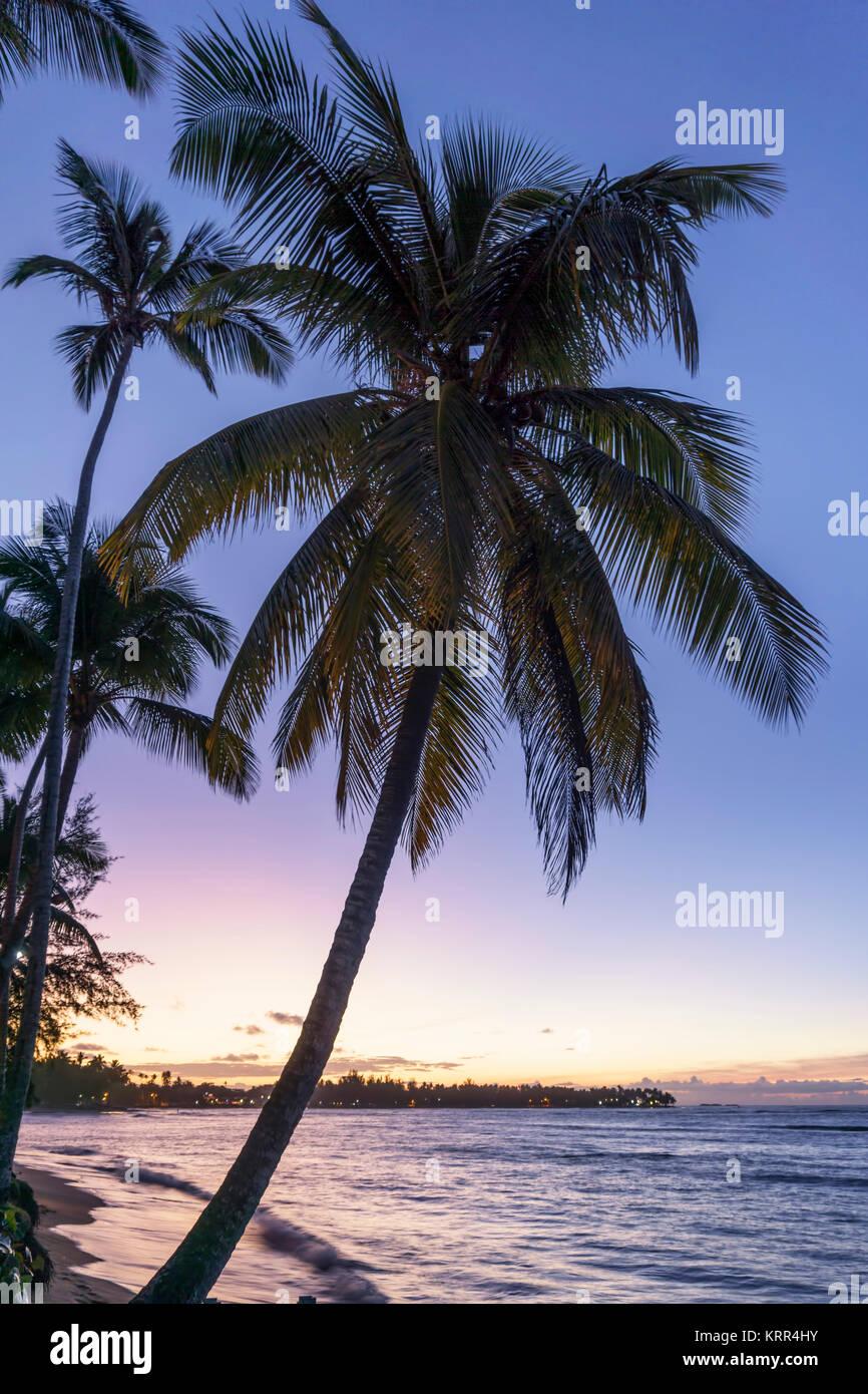 Las Terrenas Strand, Sonnenuntergang, Dominikanische Republik Stockbild