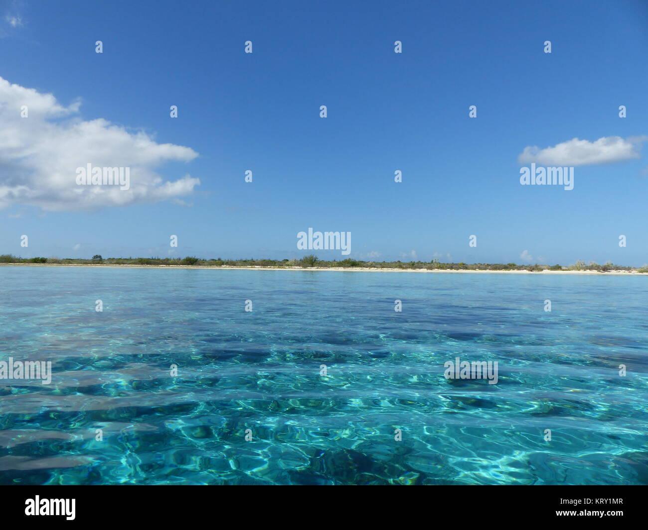 Coral Reef aus Klein Bonaire Stockbild