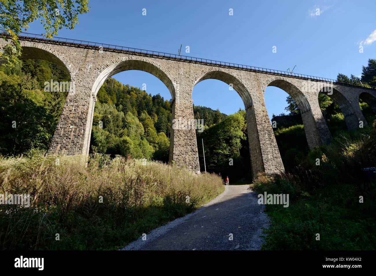 Schwarzwald, Viadukt der H?llbahn über die ravennaschlucht, Schwarzwald, Viadukt der Höllbahn über Stockbild