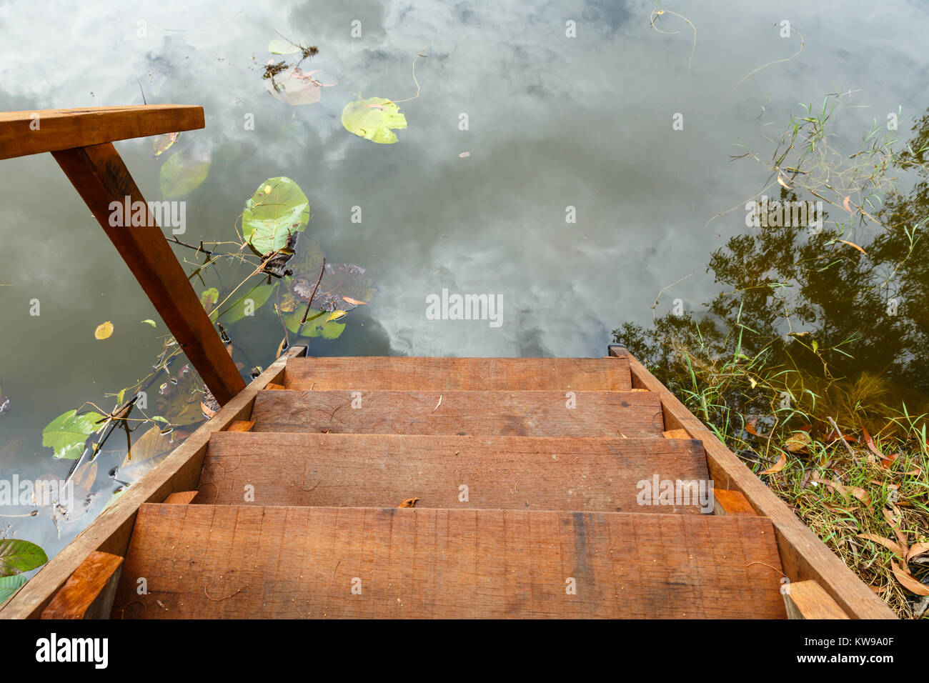Holzleiter für Schwimmen Stockbild