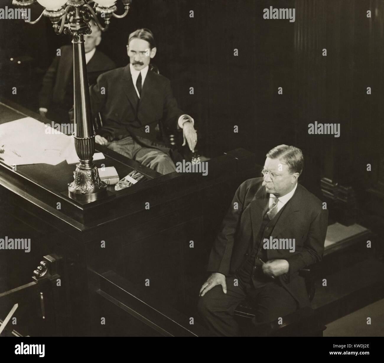 Oberst Theodore Roosevelt, April 1917 vom renommierten Fotografen, Pirie MacDonald. (BSLOC_2017_8_72) Stockbild