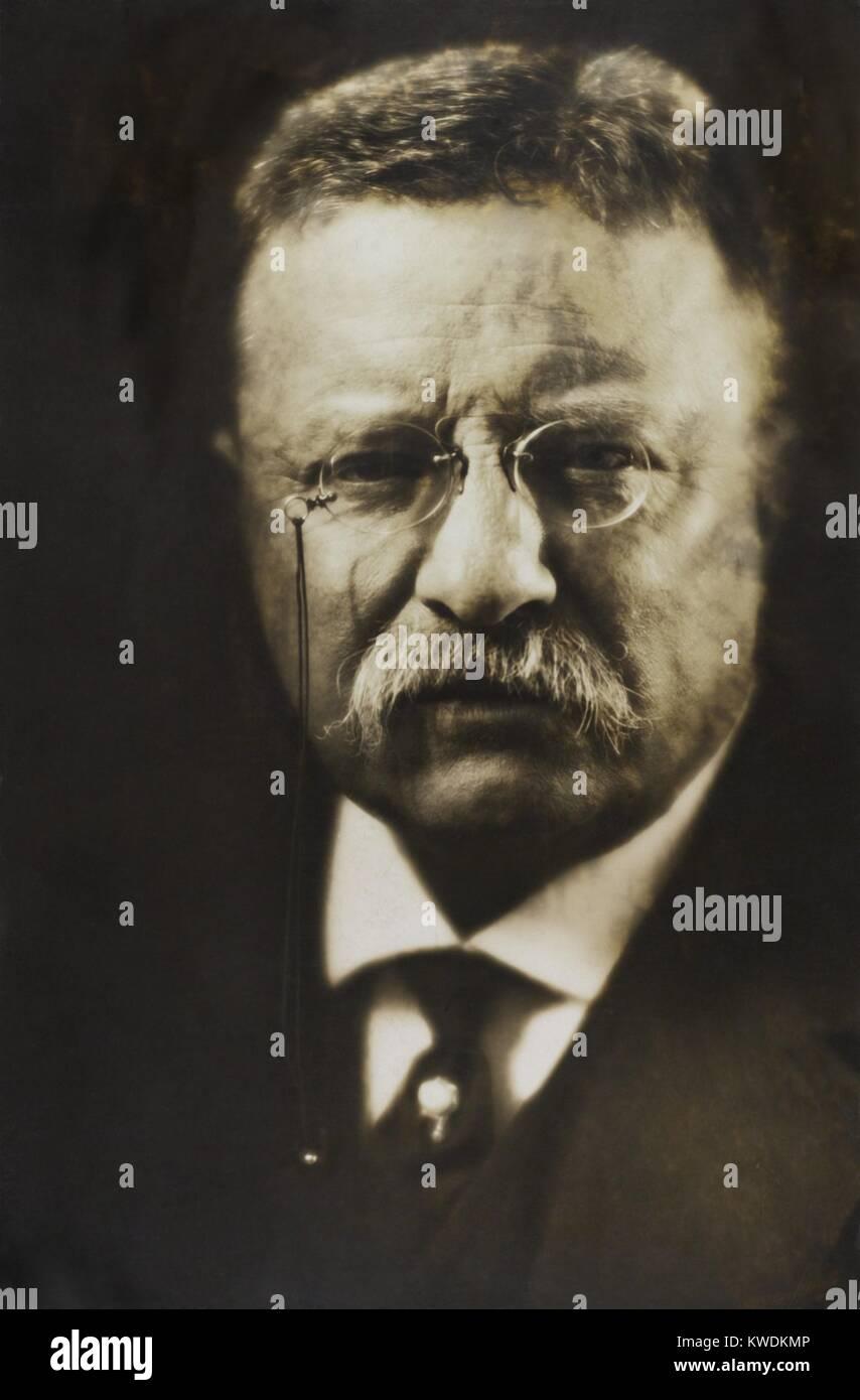Oberst Theodore Roosevelt in einem Wagen sitzt, trug einen Pelz-collared Wintermantel. Ca. 1913-1918 (BSLOC_2017 Stockbild