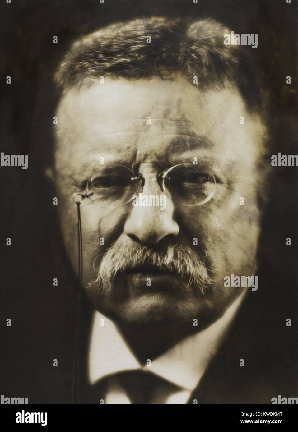 Oberst Theodore Roosevelt, April 1917 vom renommierten Fotografen, Pirie MacDonald. Er fotografierte über 70.000 Stockbild