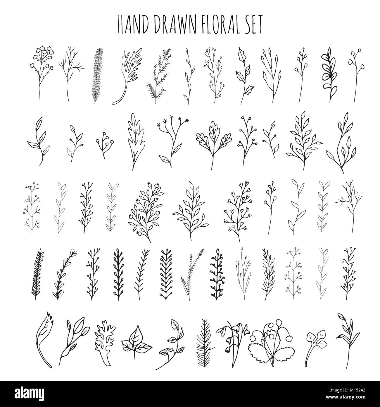 Sammlung Von Hand Gezeichnet Vektor Blüten Und Zweige Mit Blättern, Blüten  Und Beeren. Moderne Skizze Sammlung. Dekorative Elemente Für Design. Tinte,  Vin